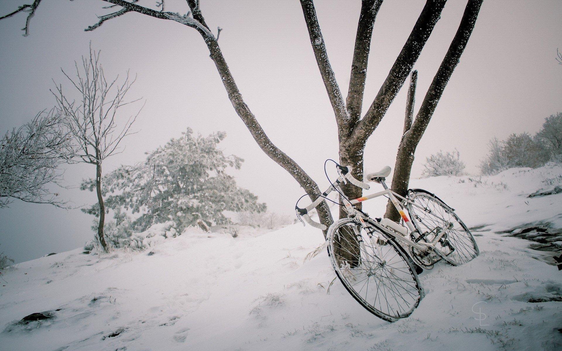 нем еще картинка велосипед рождество под снегом заболевание может привести