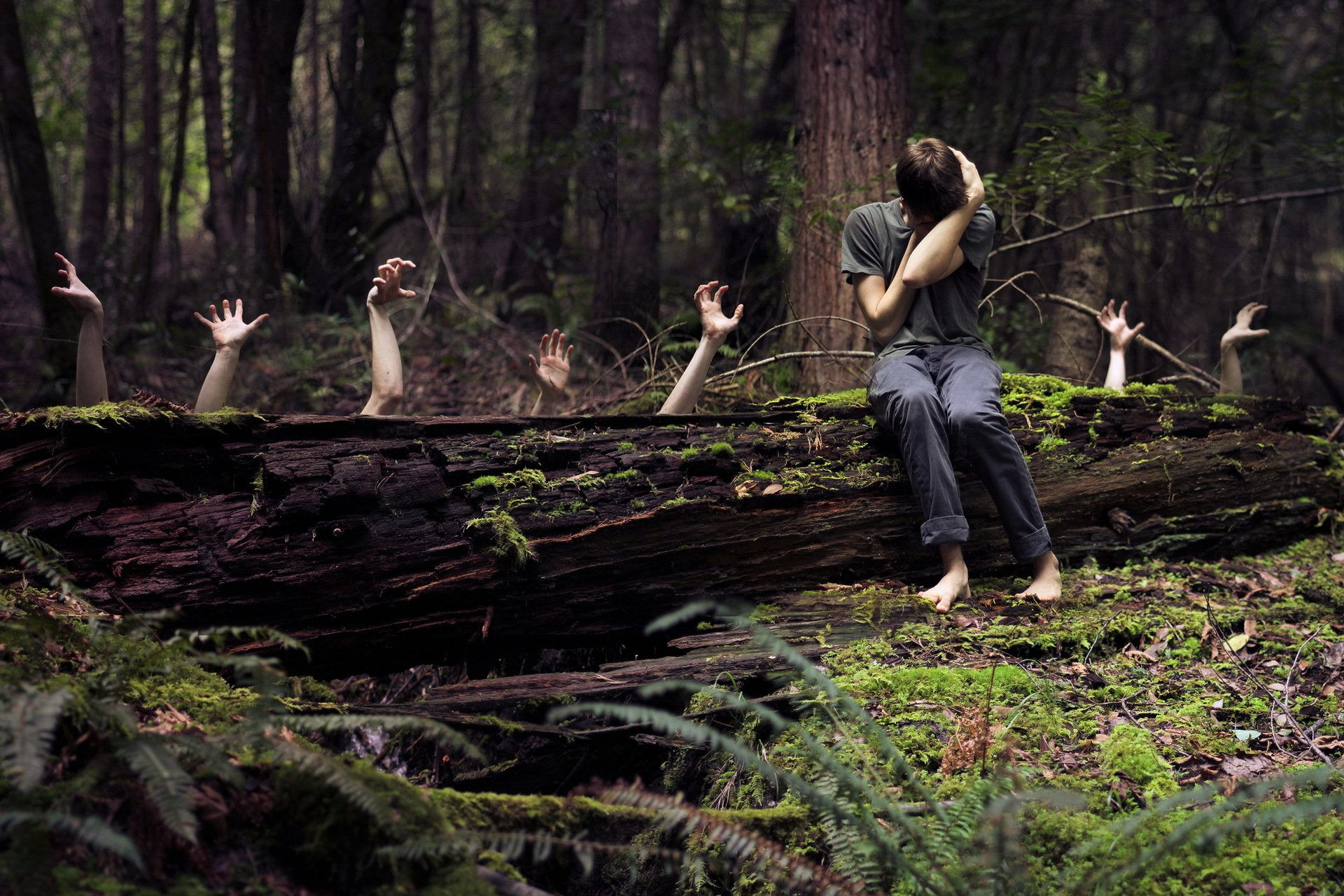 красивые картинки мужчина лес имеете информации наградам