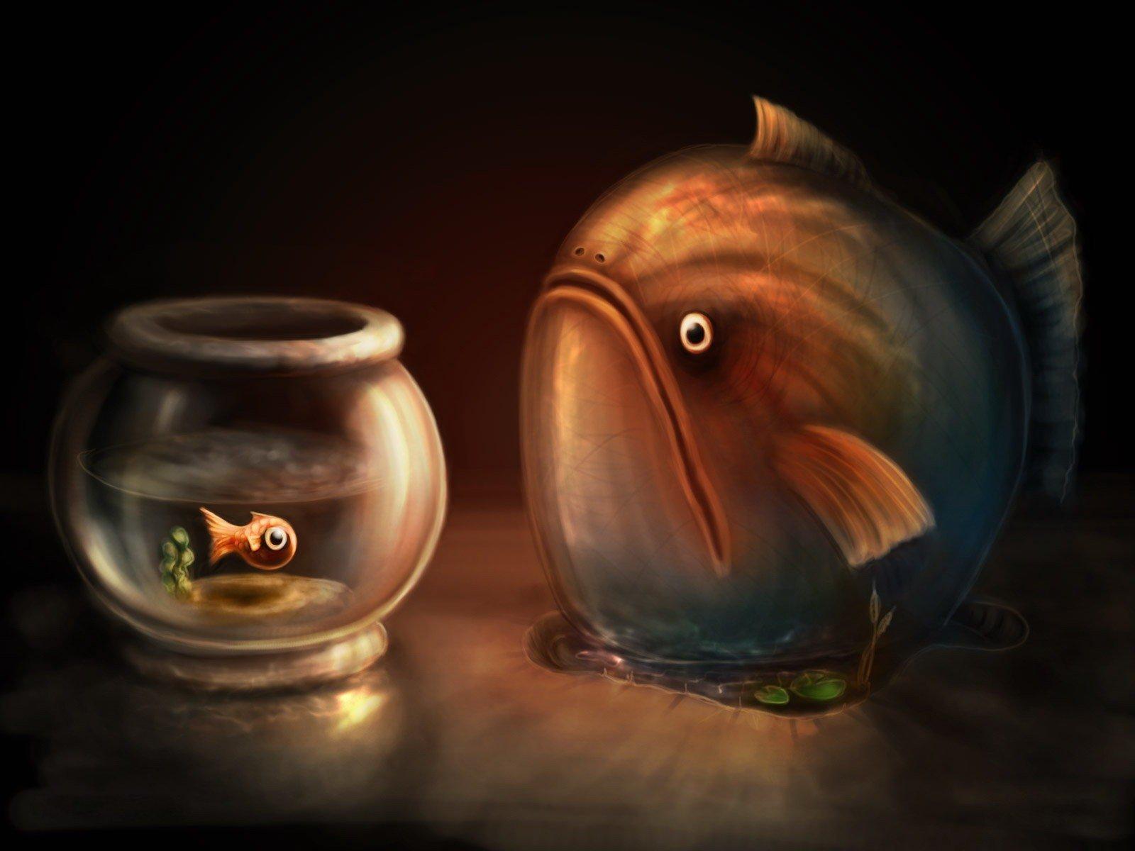 смешная картинка рыба в аквариуме частушечку спою, это