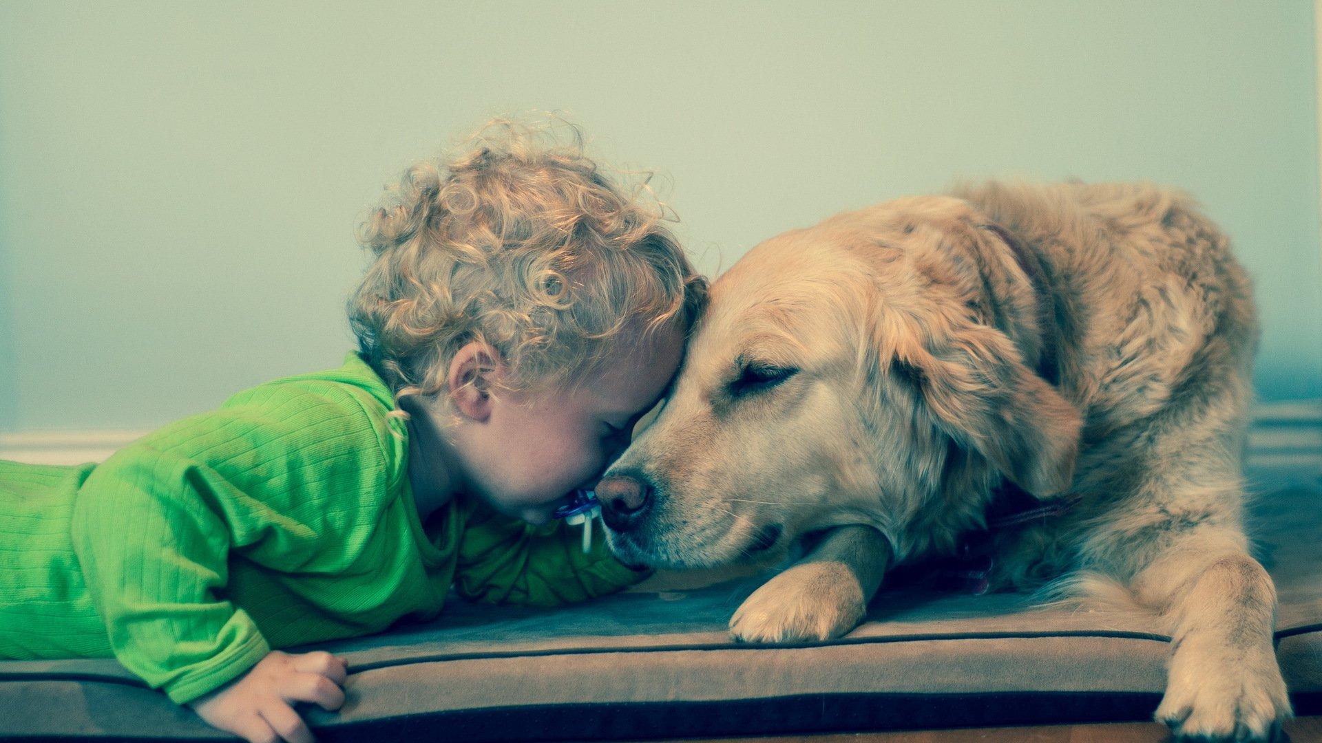 Собака ребенок  № 2980063 загрузить