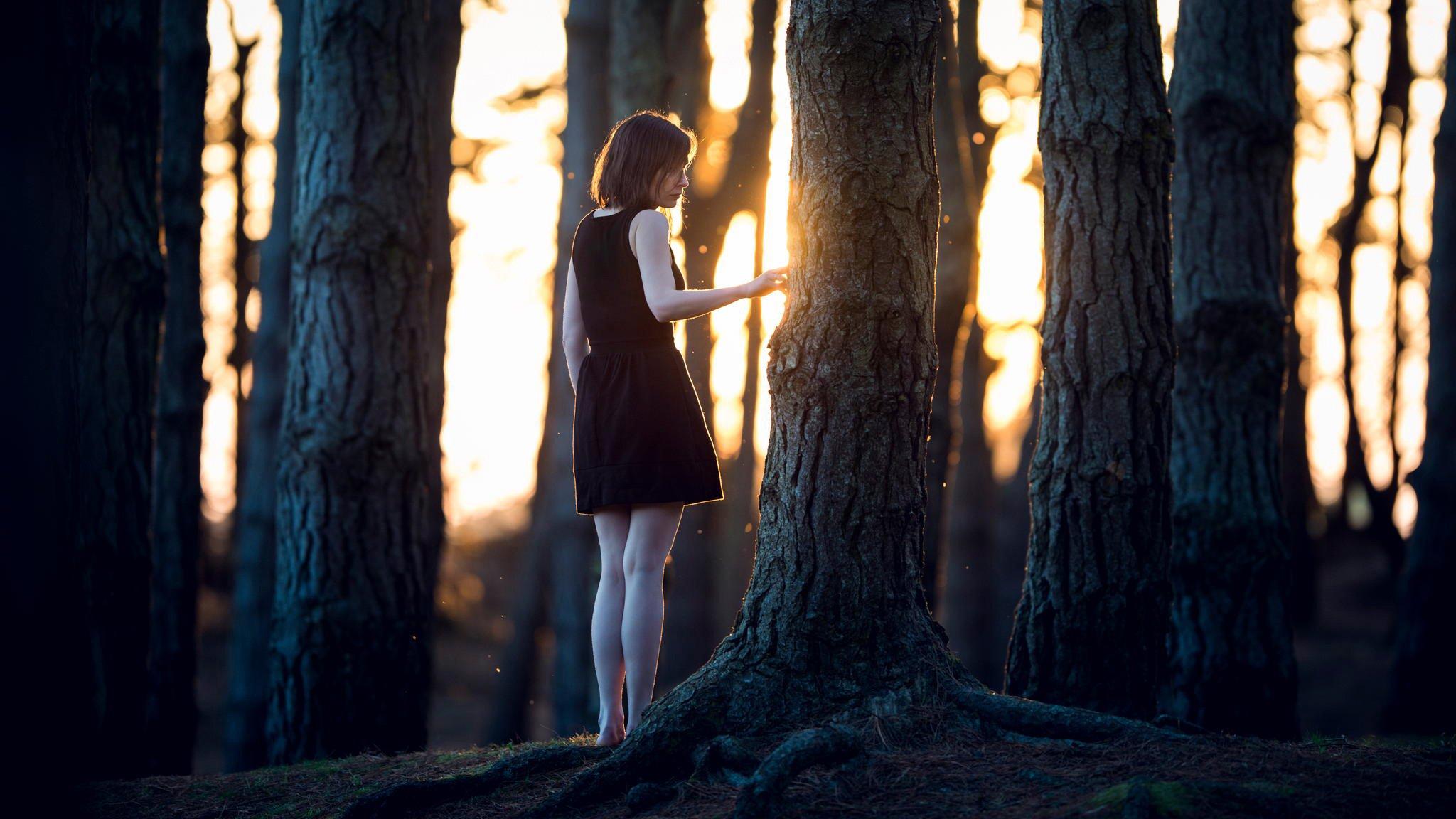 девушка лес вечер на телефон