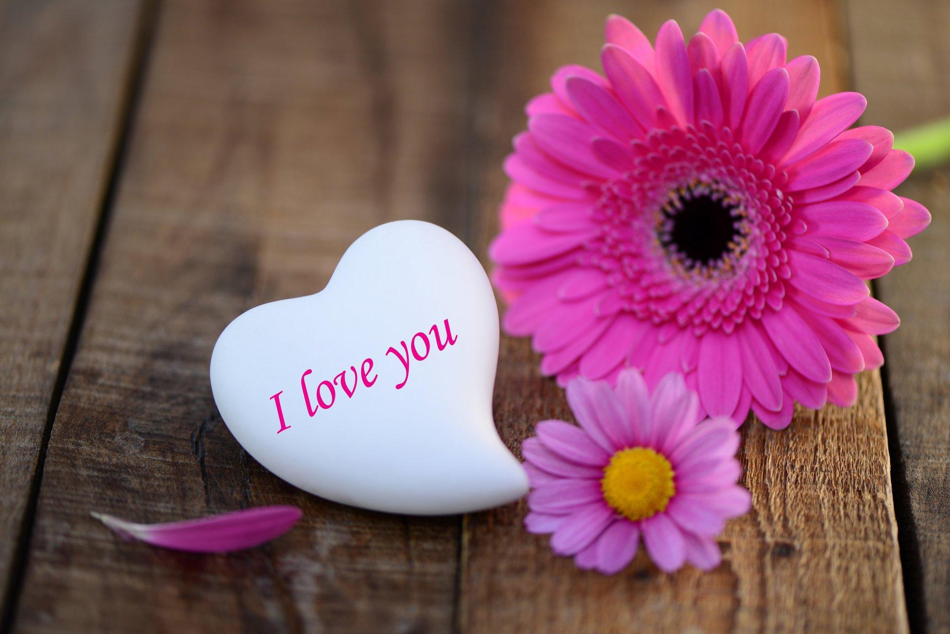 Цветы про любовь