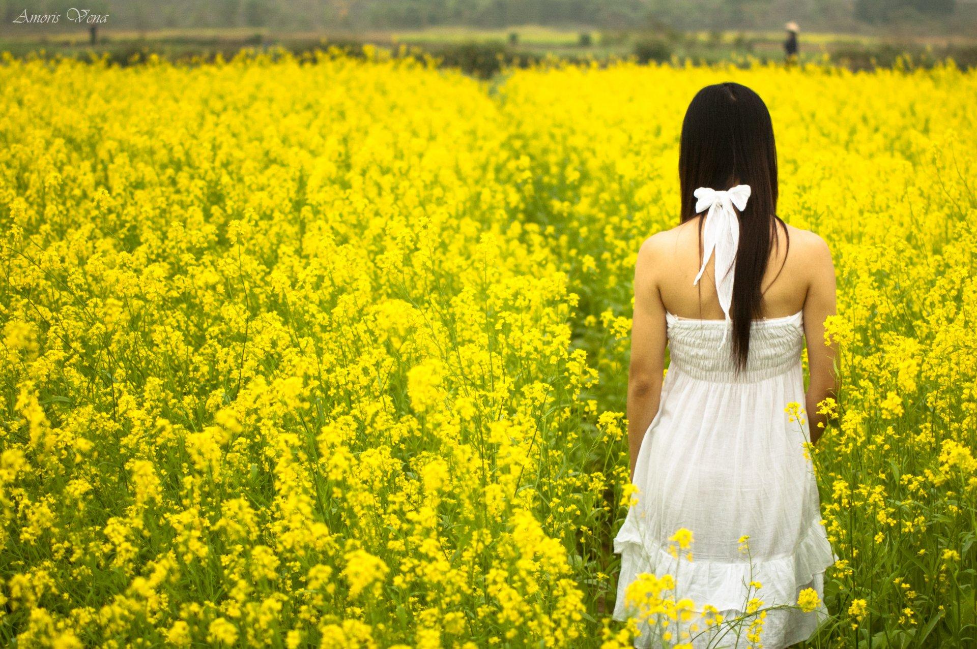 девушка природа белое платье цветы желтые  № 3832557 бесплатно