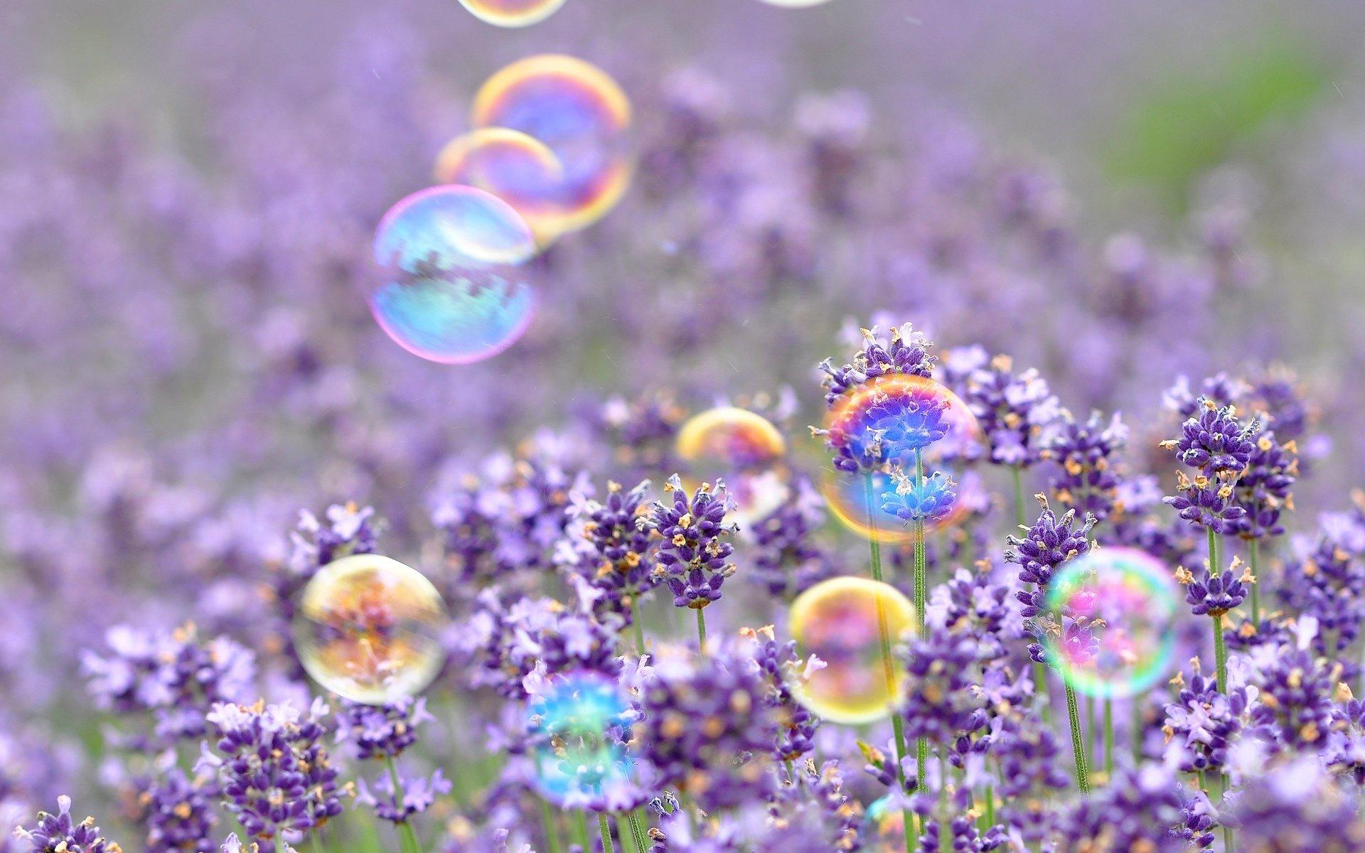 пузыри фон макро  № 3275965  скачать