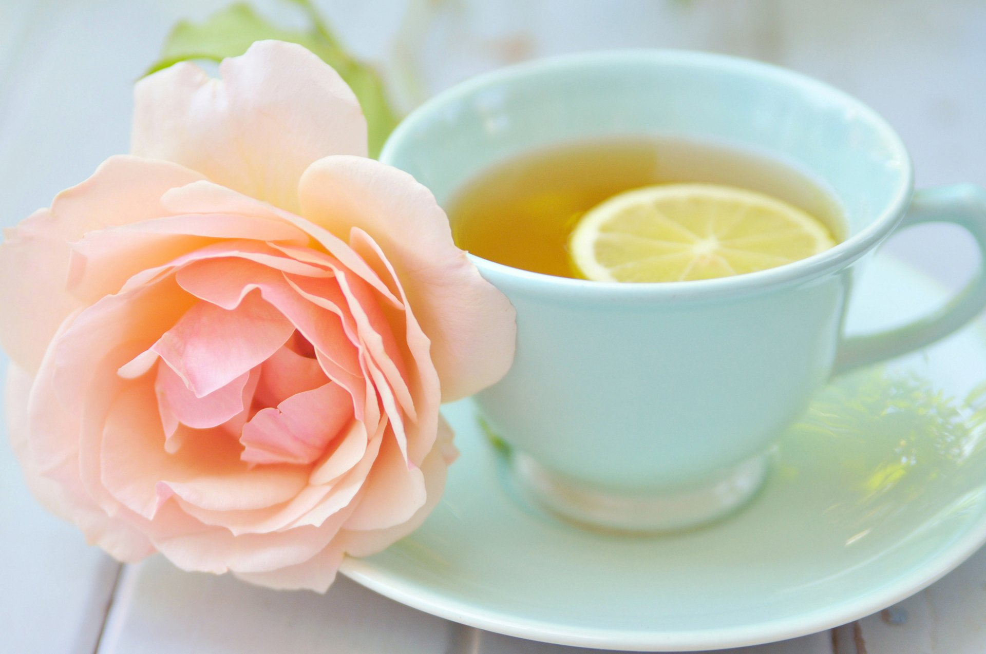 Цветок садовый с добрым утром фото