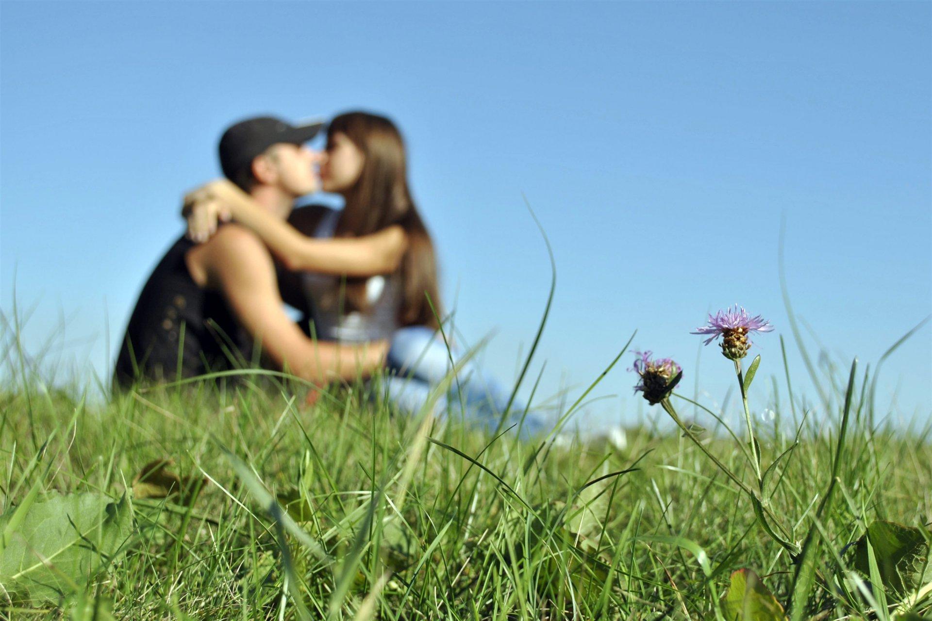 Любовь картинки природа, сделать