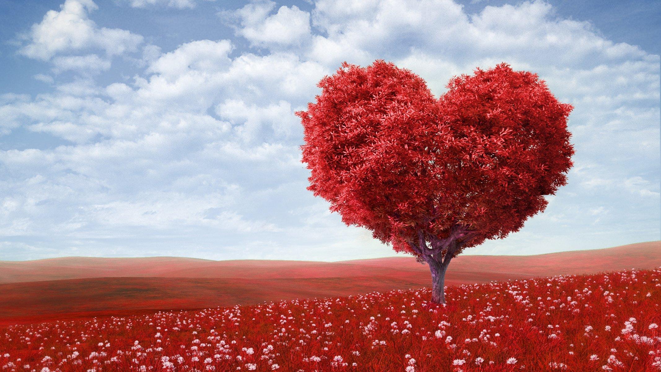 Romantic love pictures facebook