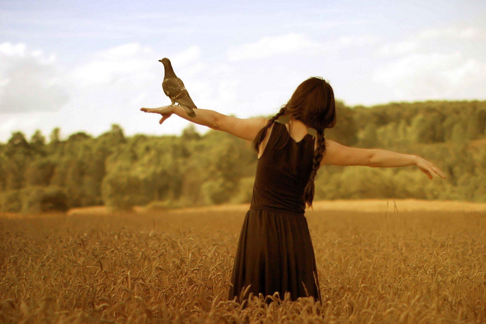 девушки птицы загрузить