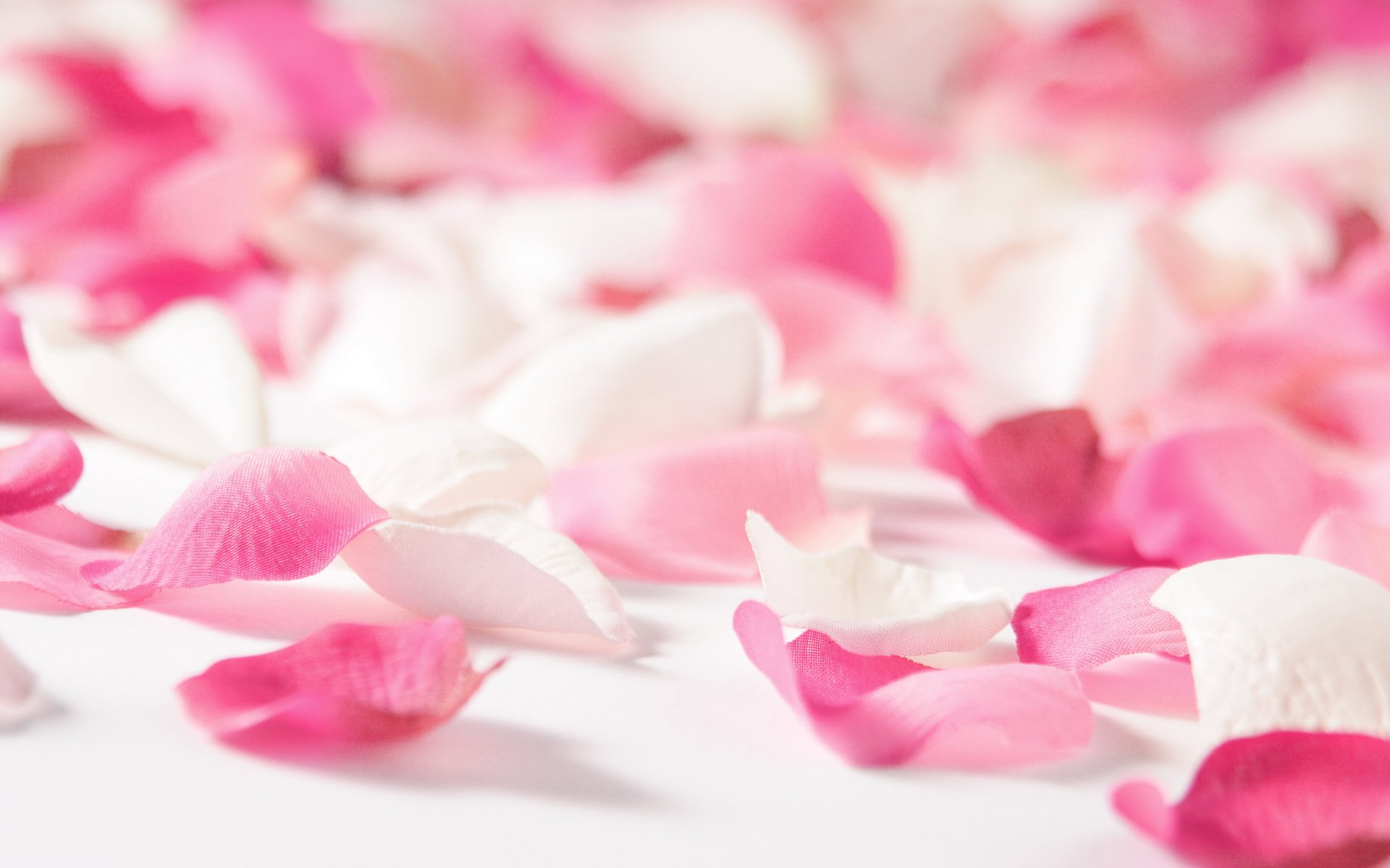 цветок частицы лепестки без смс