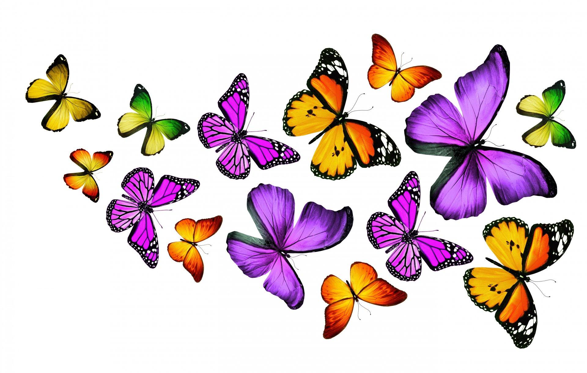 Красивые цветочки картинки для печати