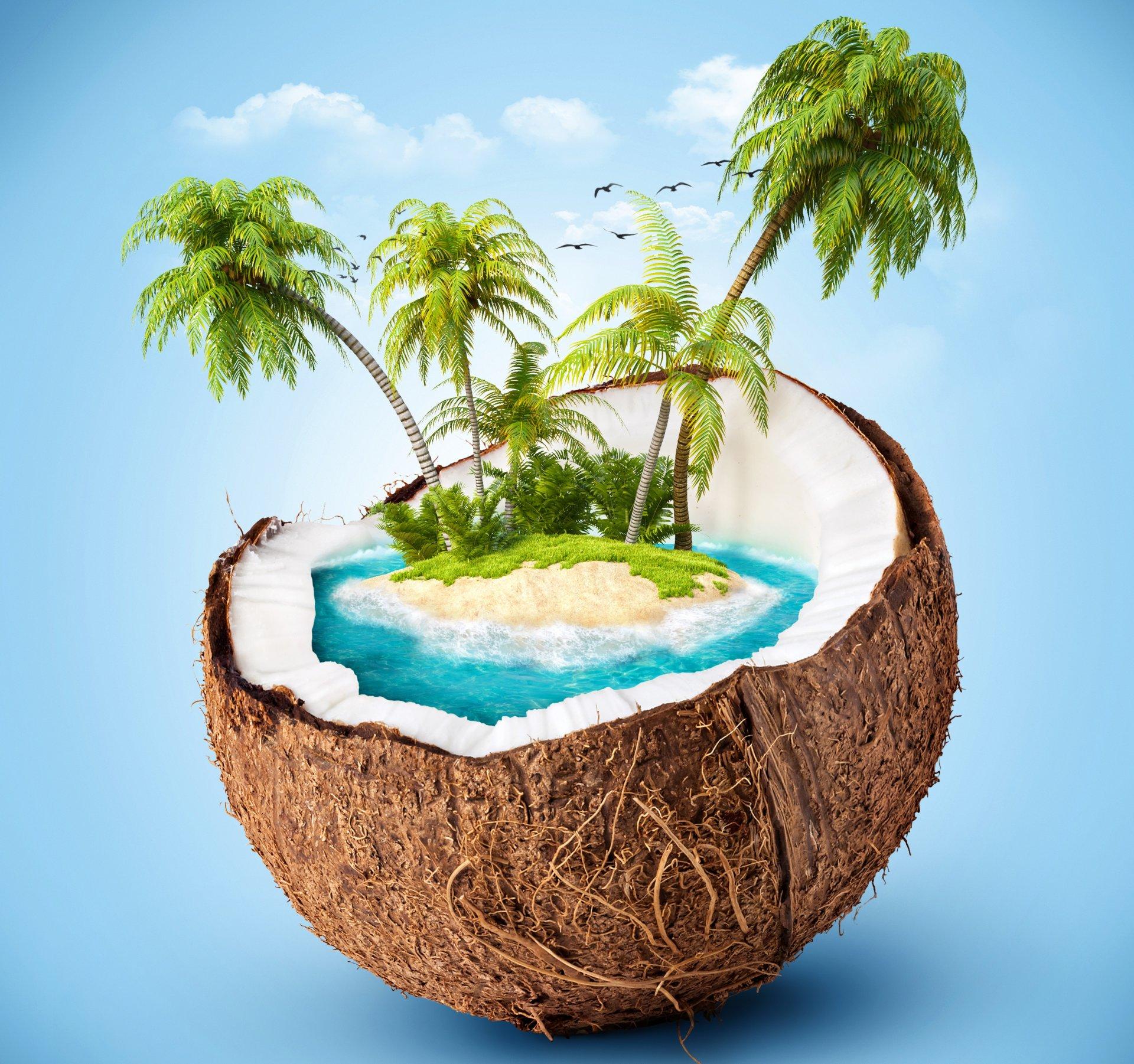 Для любимого, картинки с днем рождения пальмы