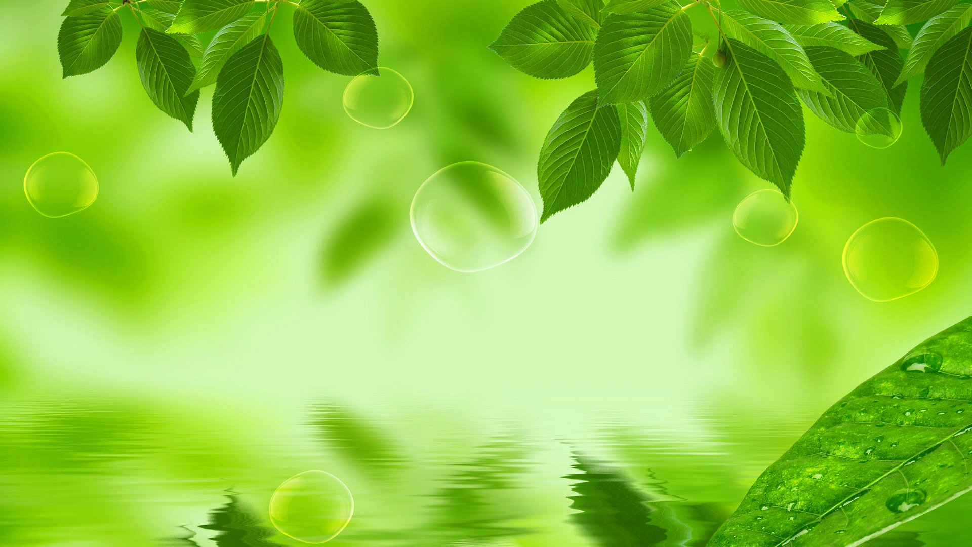 Ельня, картинки зеленый фон для презентации