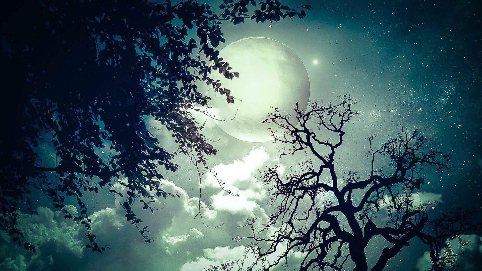Сияла ночь картинки