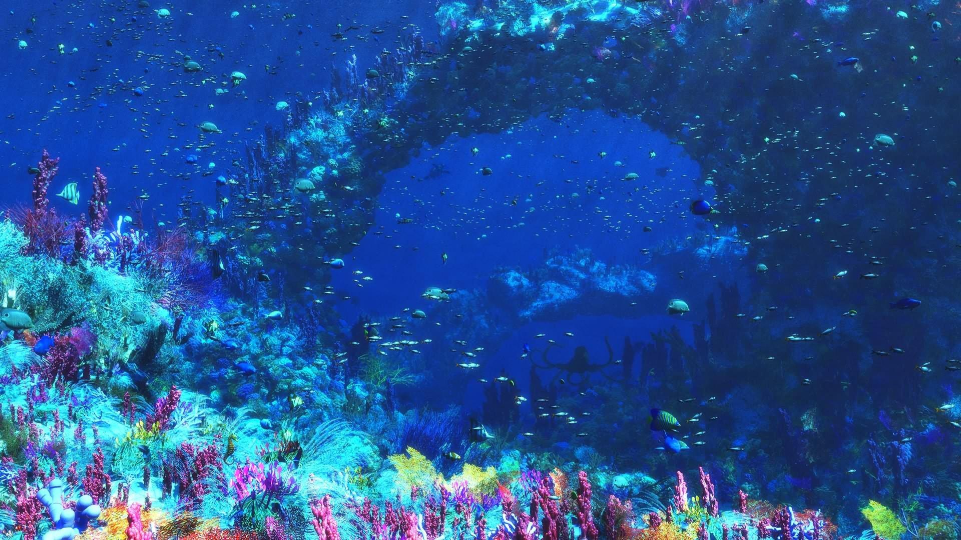 Графика под водой  № 2252448 загрузить