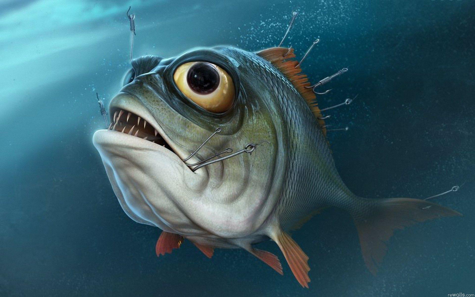 Обои На Андроид Рыбалка