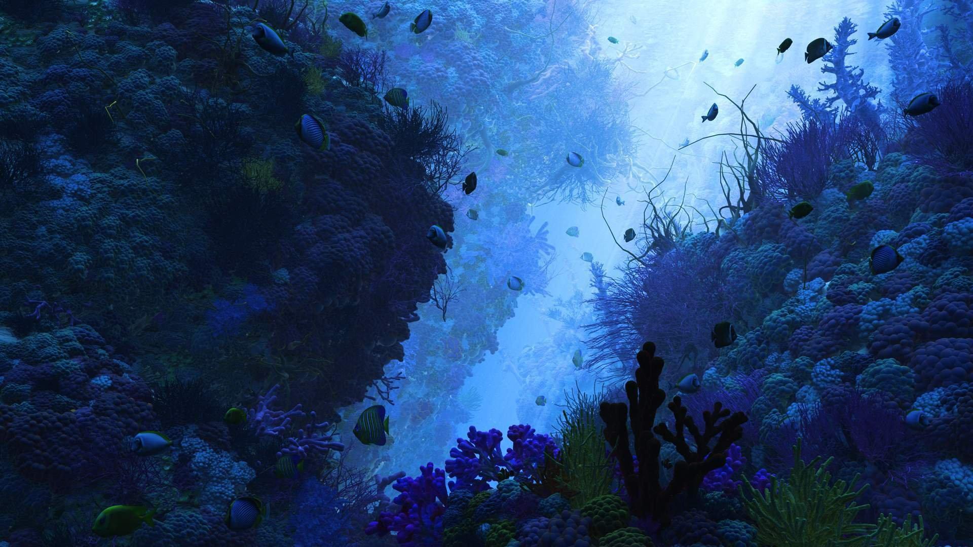 Фотообои на тему берег океана человек состоянии