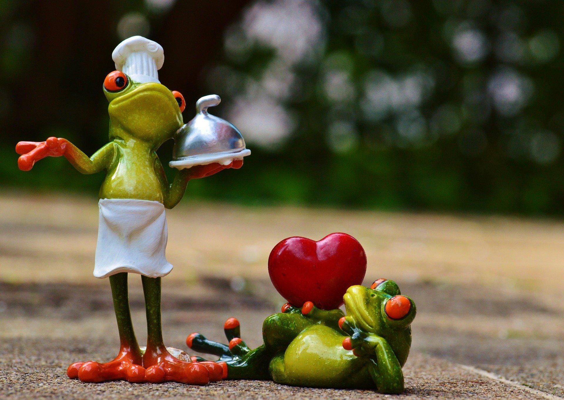 Картинки влюбленных лягушат