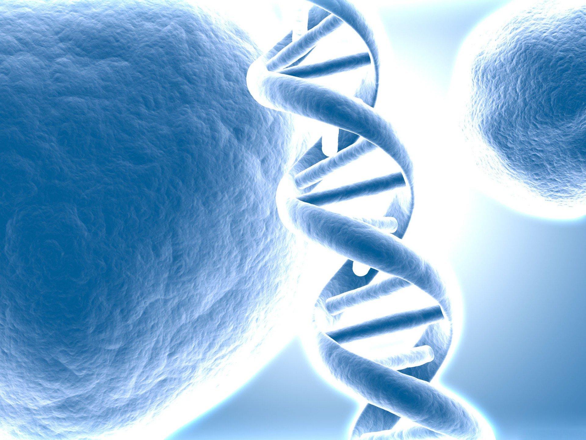 графика 3D ДНК graphics DNA бесплатно