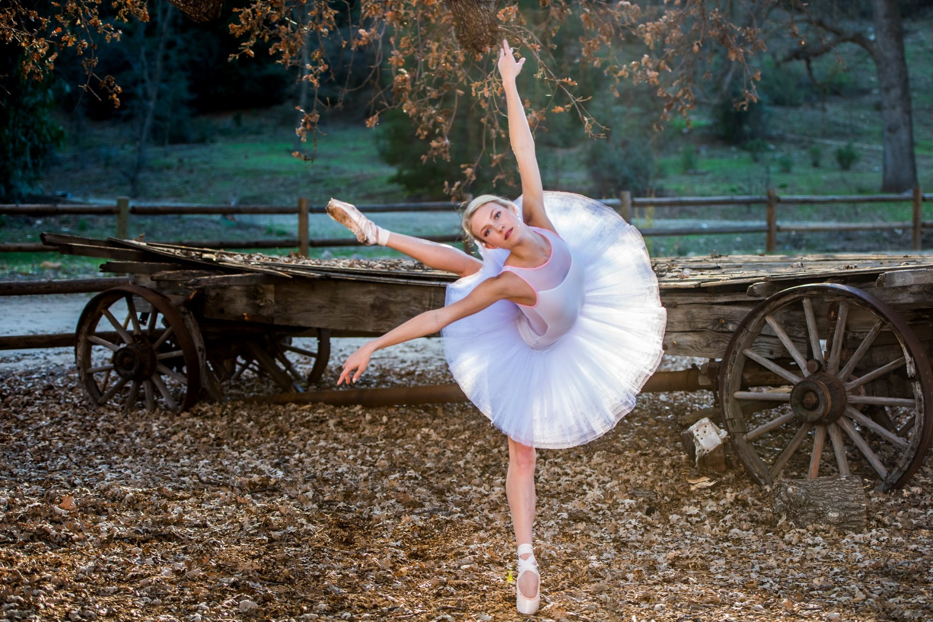 Самые крутые фото балерины на природе