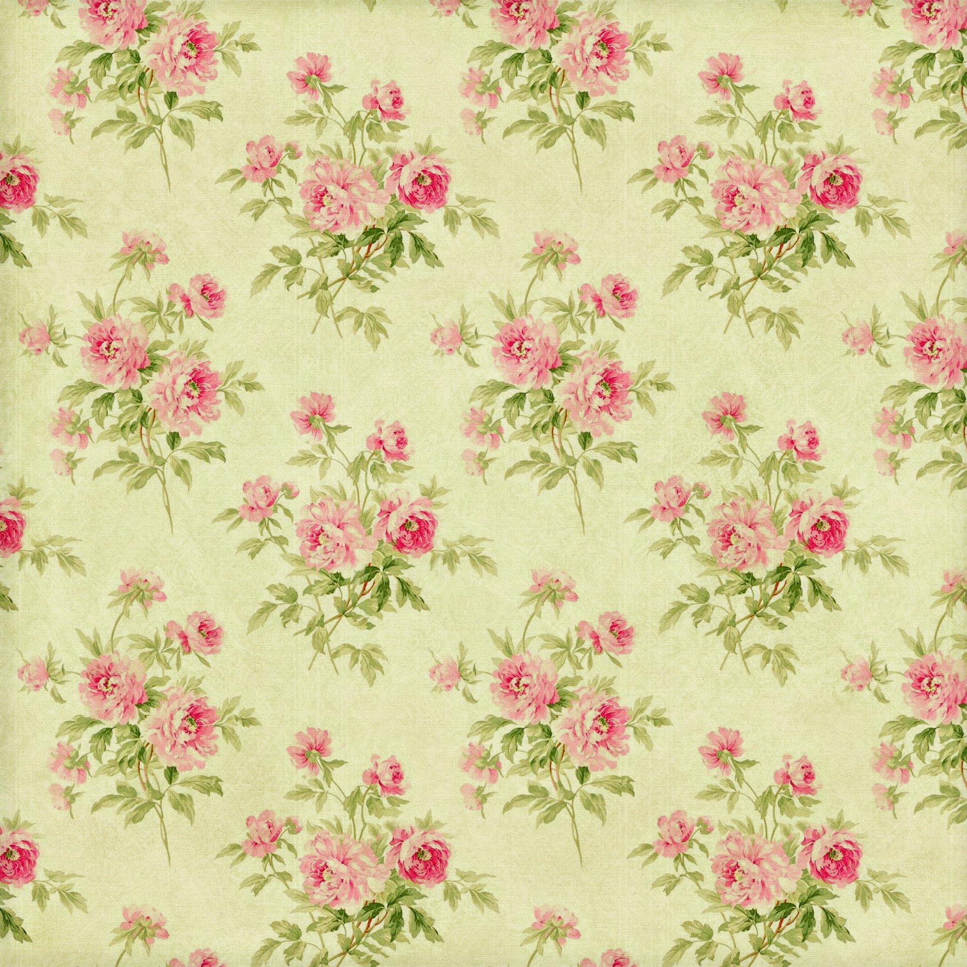 Широкоформатные обои с цветами на рабочий стол 8