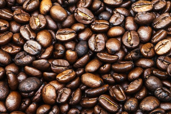 coffee coffee beans whole pattern