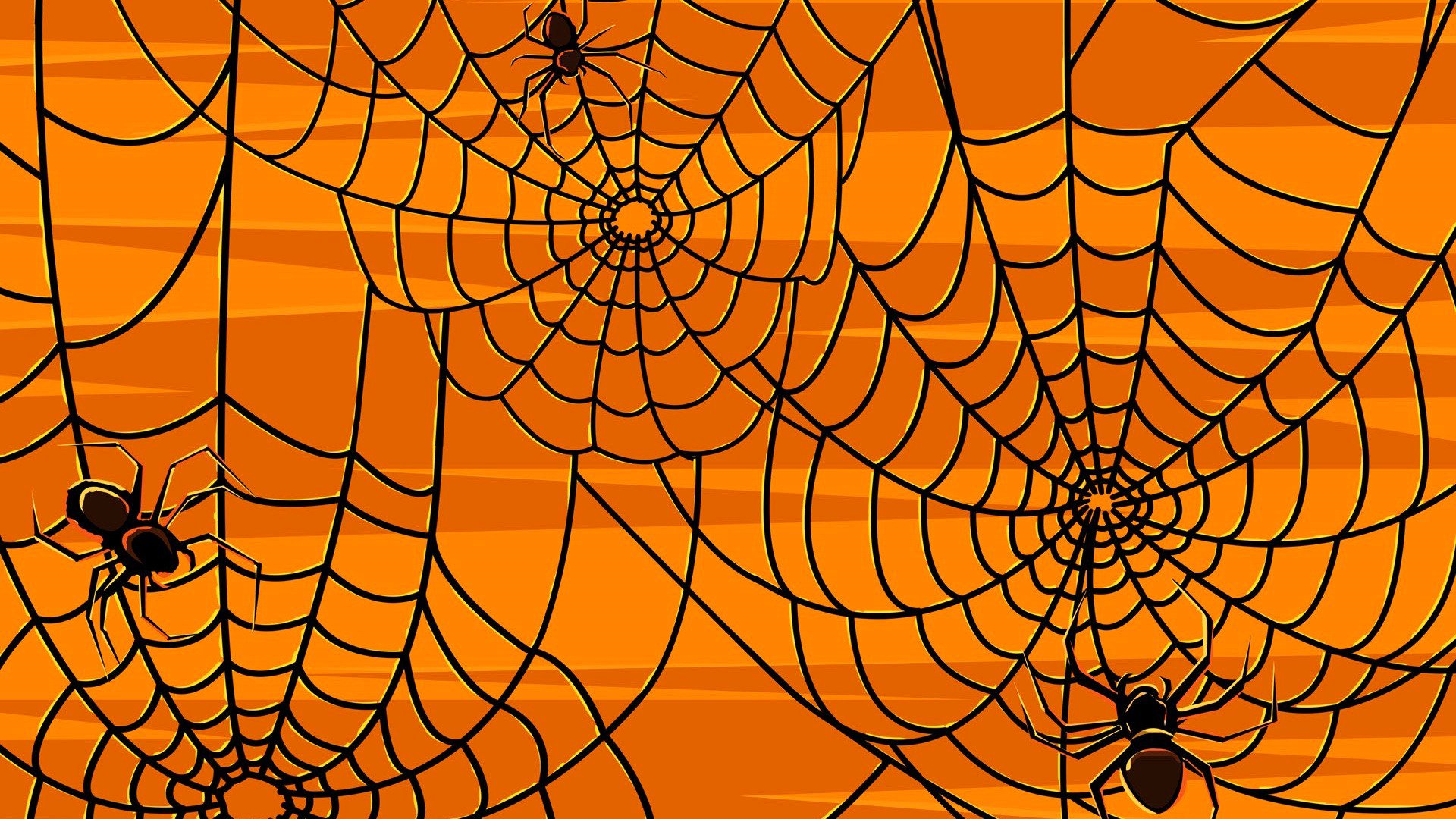 Spider Web Background Stock Photos and Images