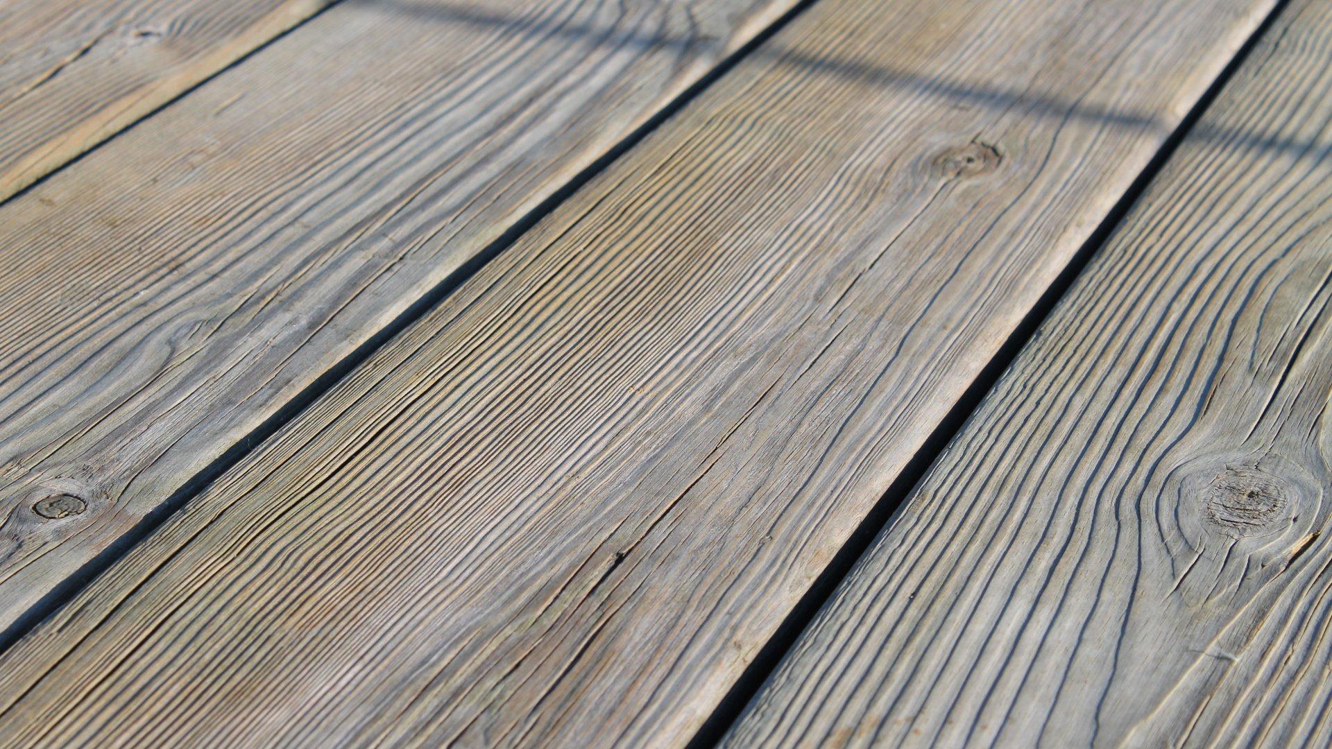 растение щель доски plant crack Board на телефон