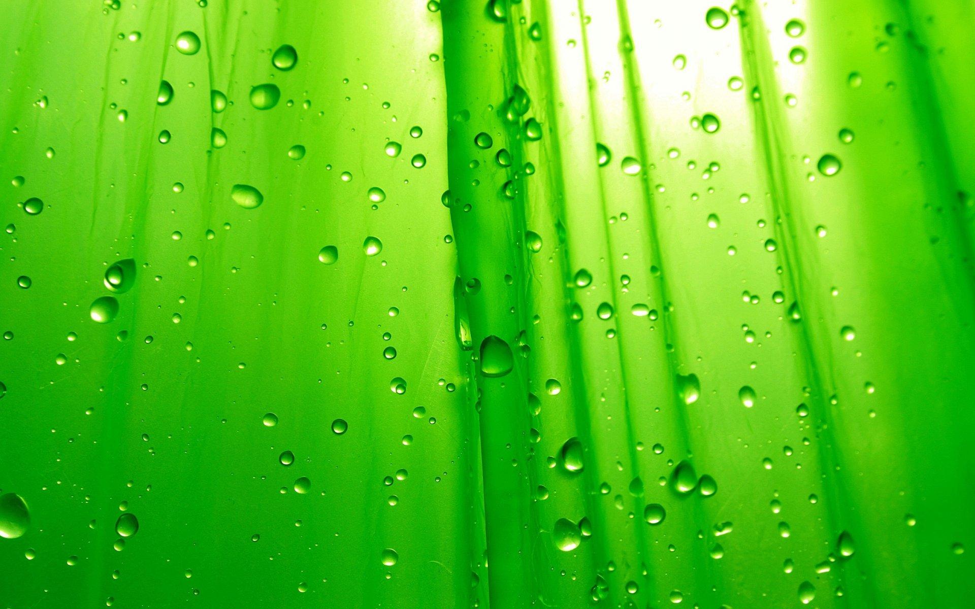 все картинки на телефон зеленый фон зря, ведь оно