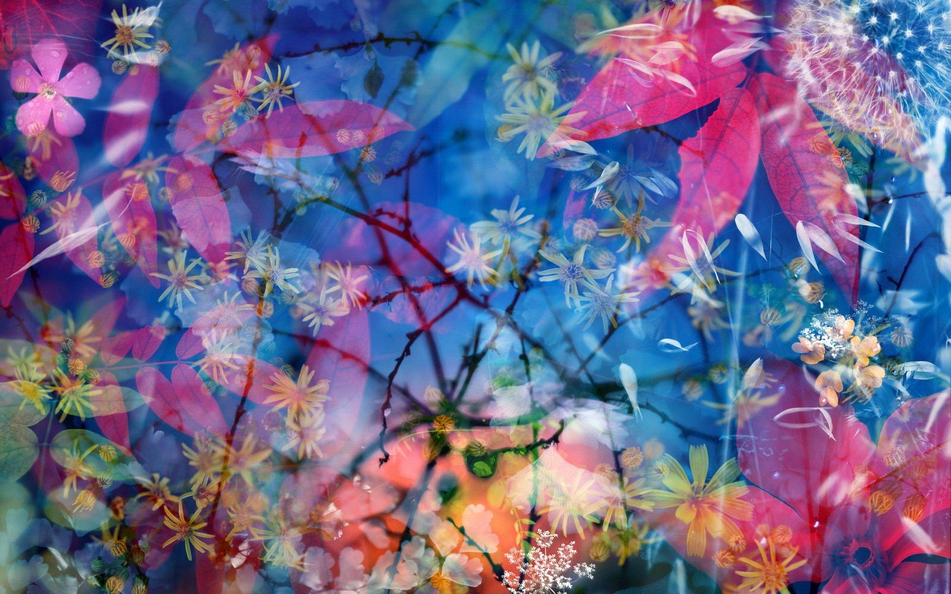природа цветы синие красные без смс