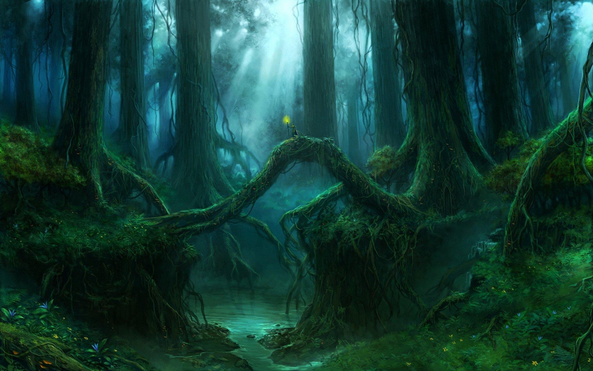 дремучий лес деревья загрузить