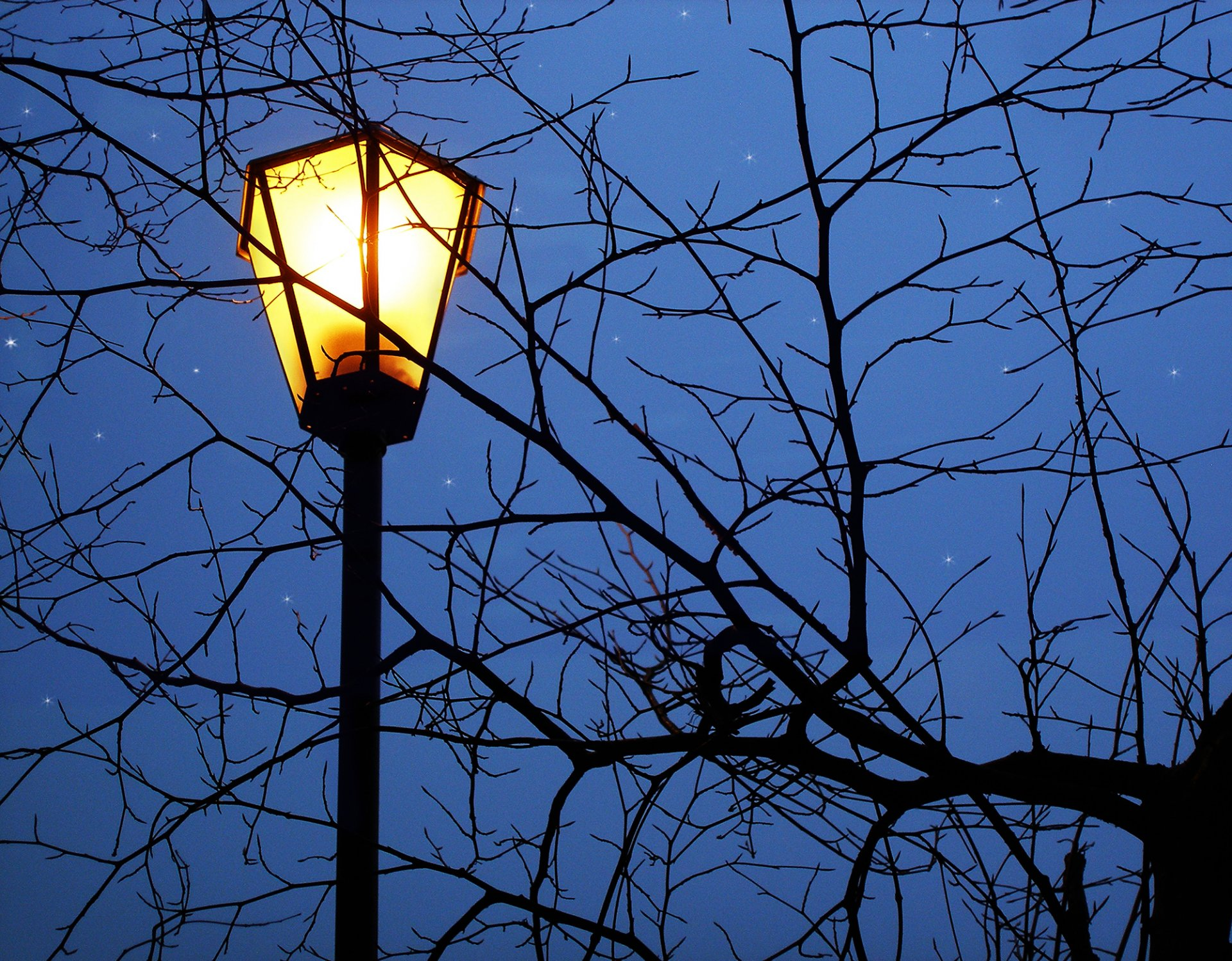 картинки фонарь ночью месяца