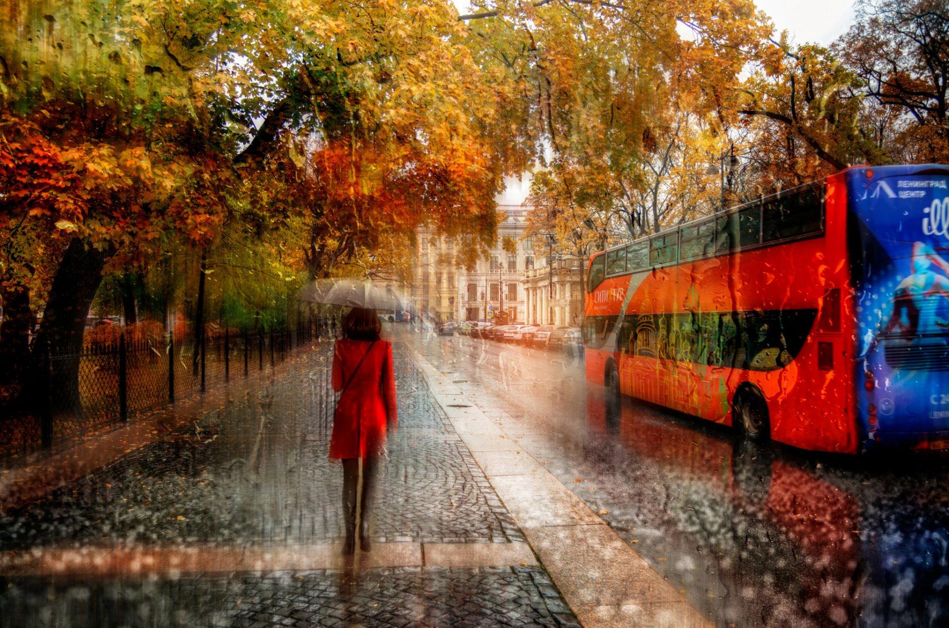 Дождь за окном картины