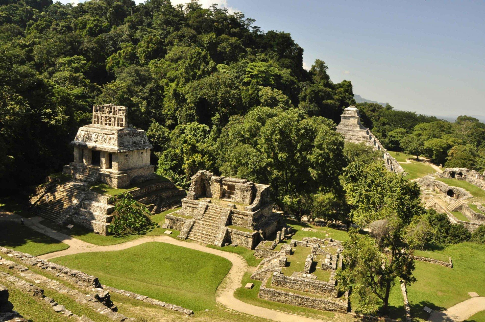 Обои мексика, город майя, древние цивилизации, паленке. Города foto 6