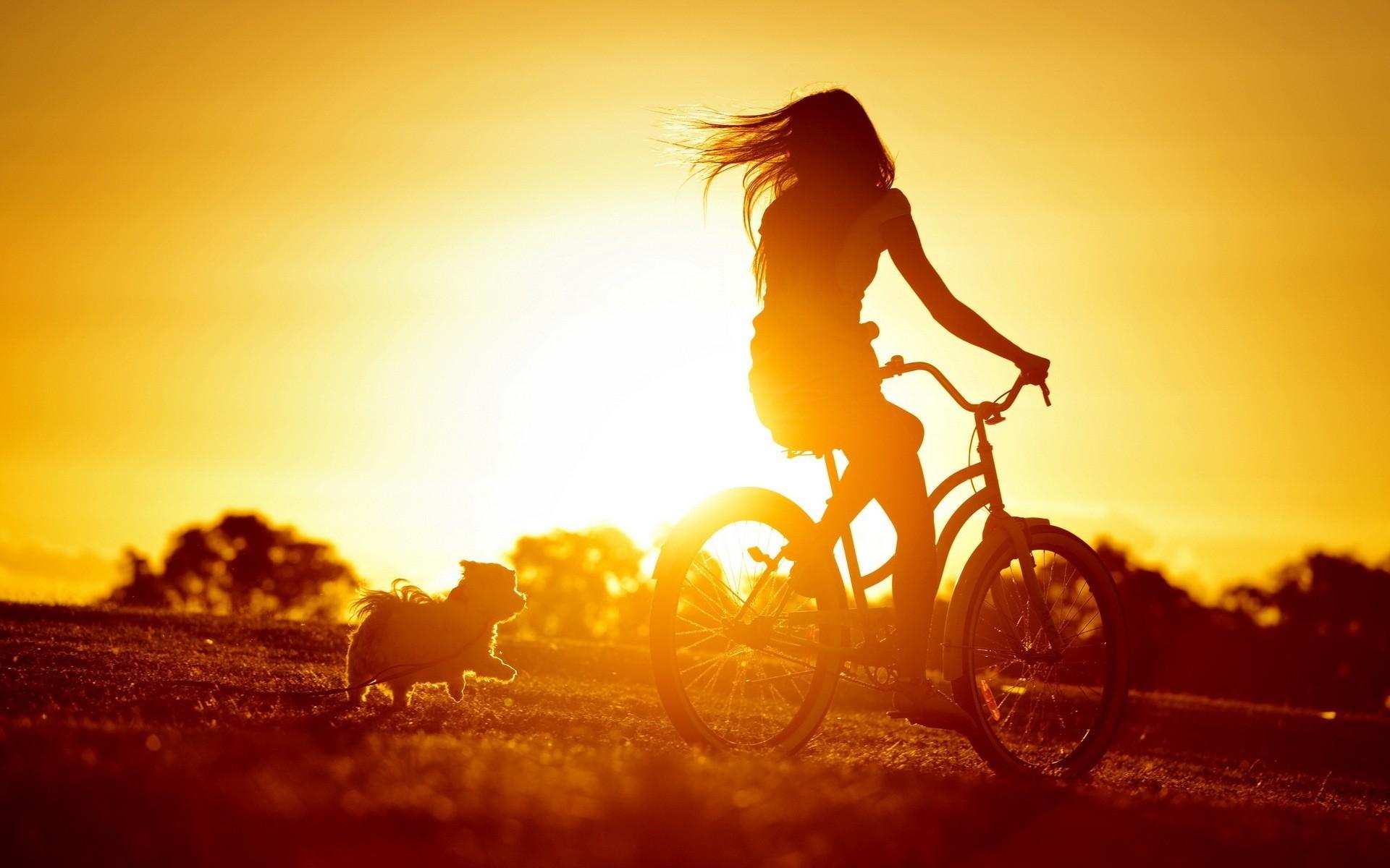 девушка парень велосипед любовь без смс