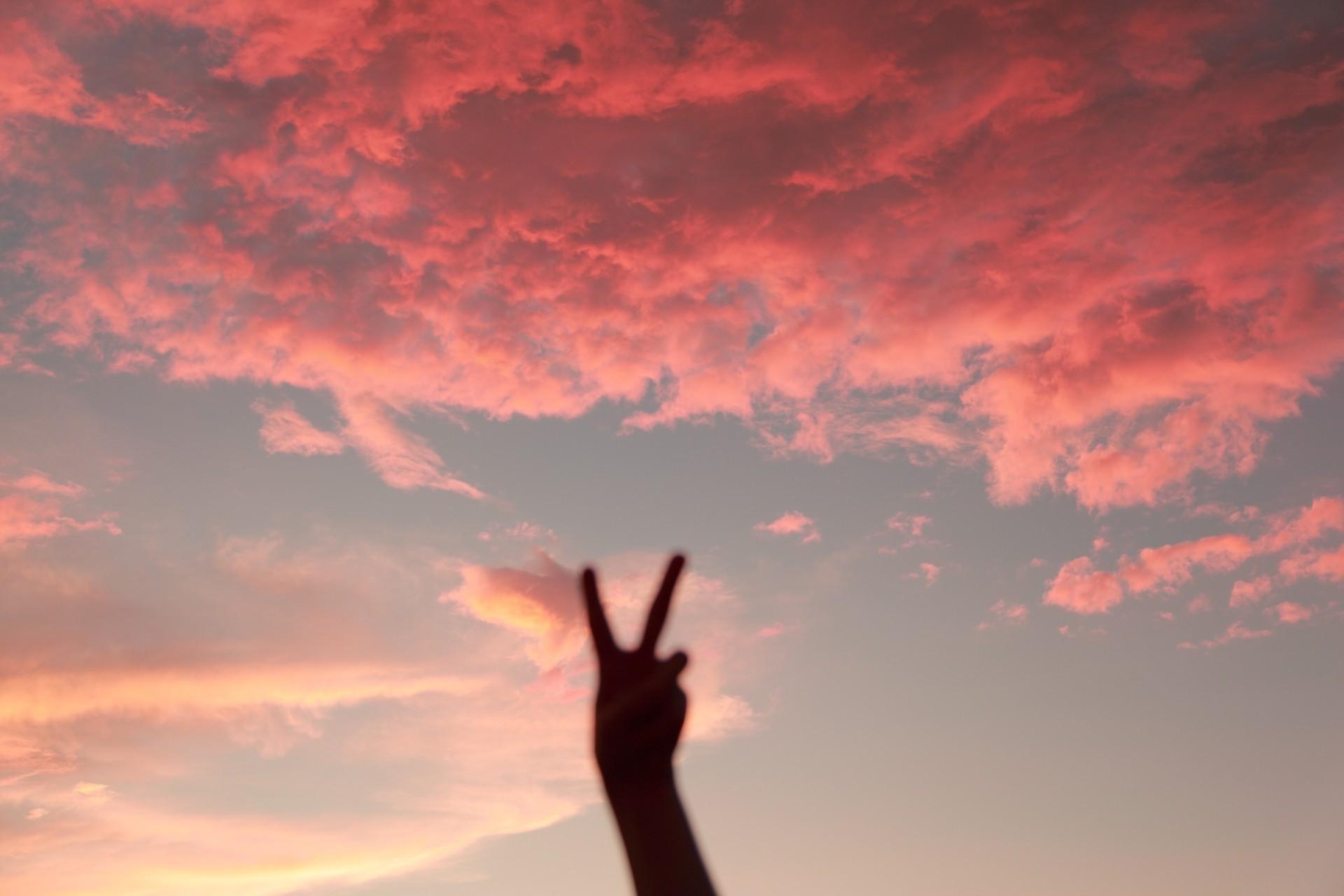 собак красивые картинки рук на фоне неба золото добавлением