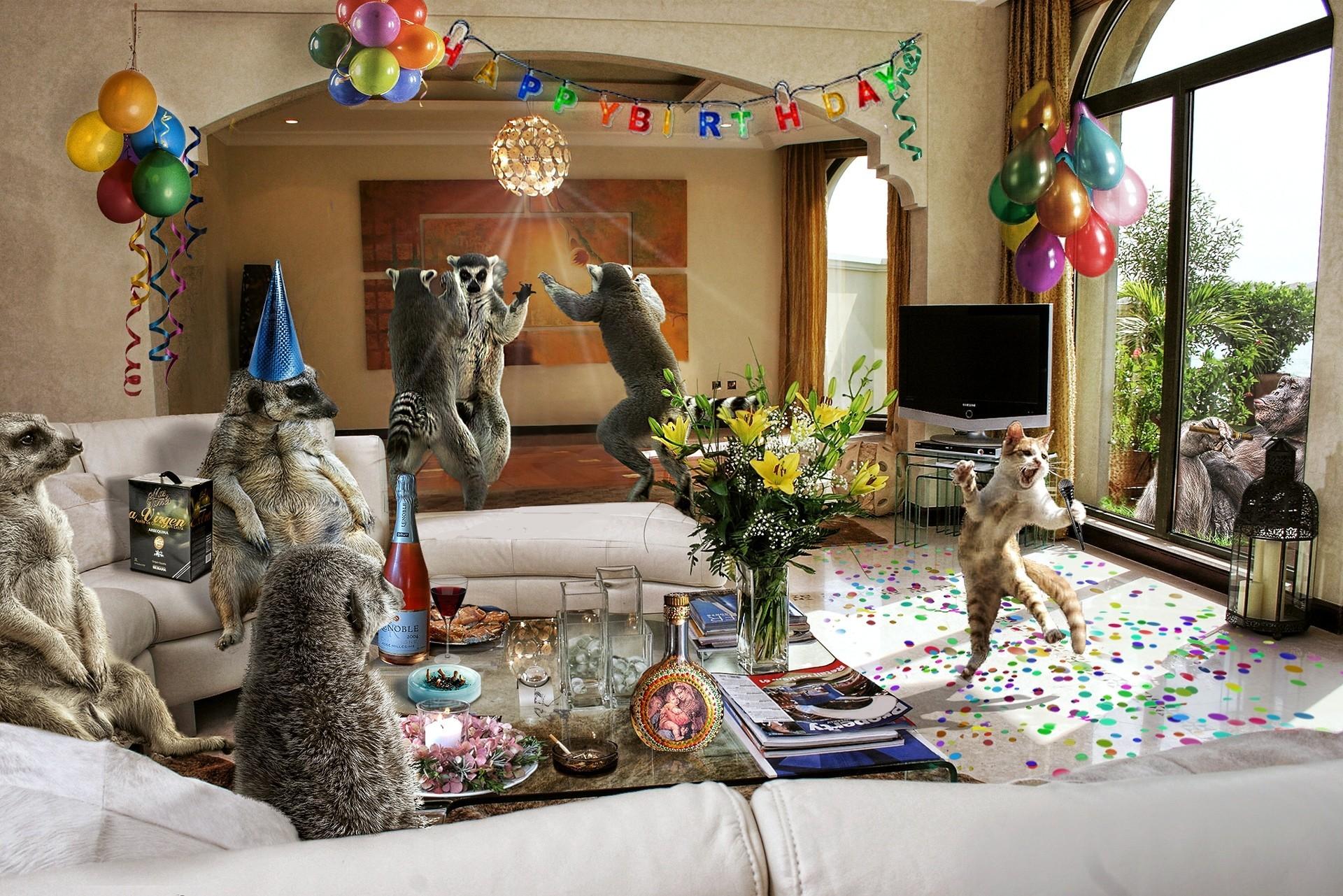 прикольные поздравления с днем про животных начать день