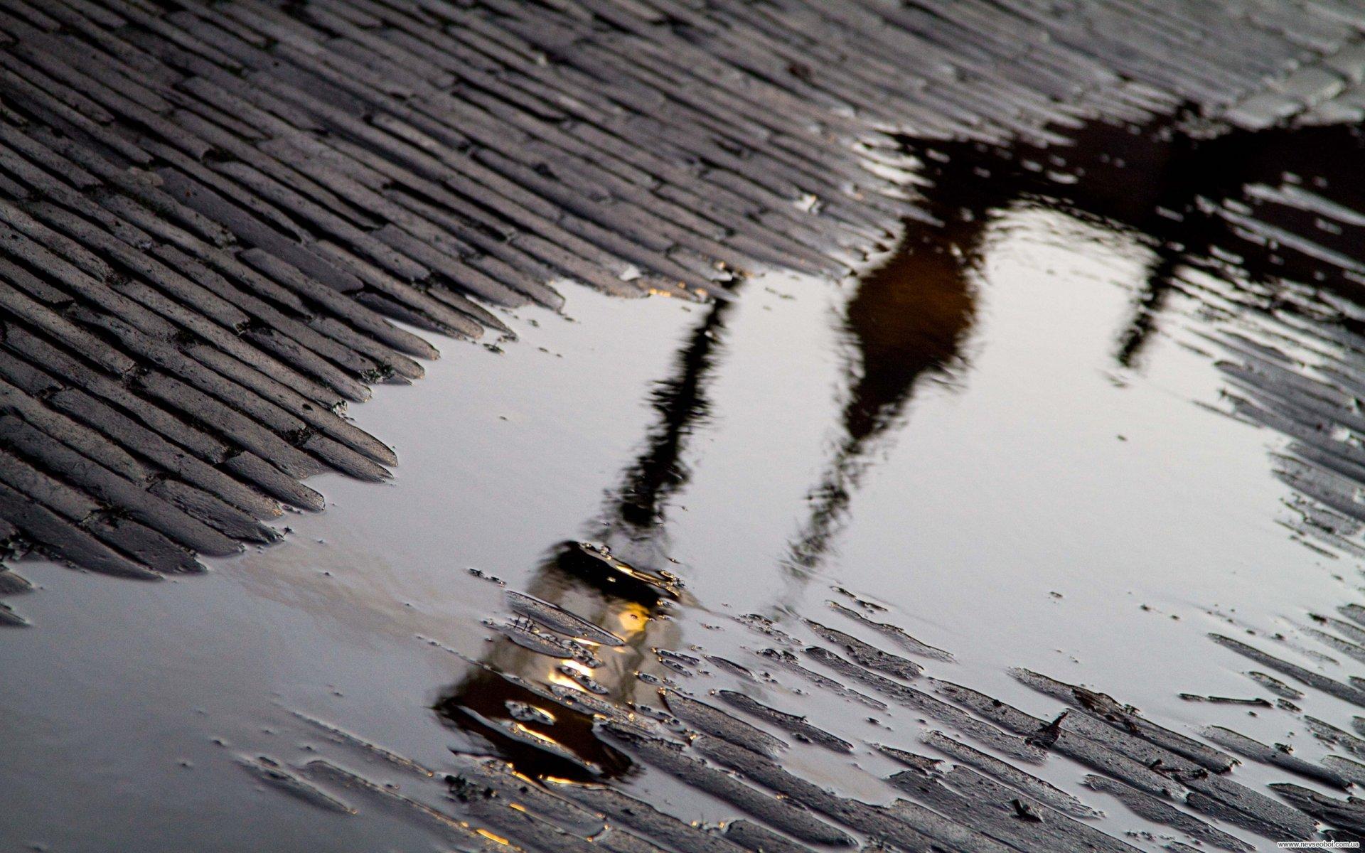 дождь на улице картинка для печати готовлю