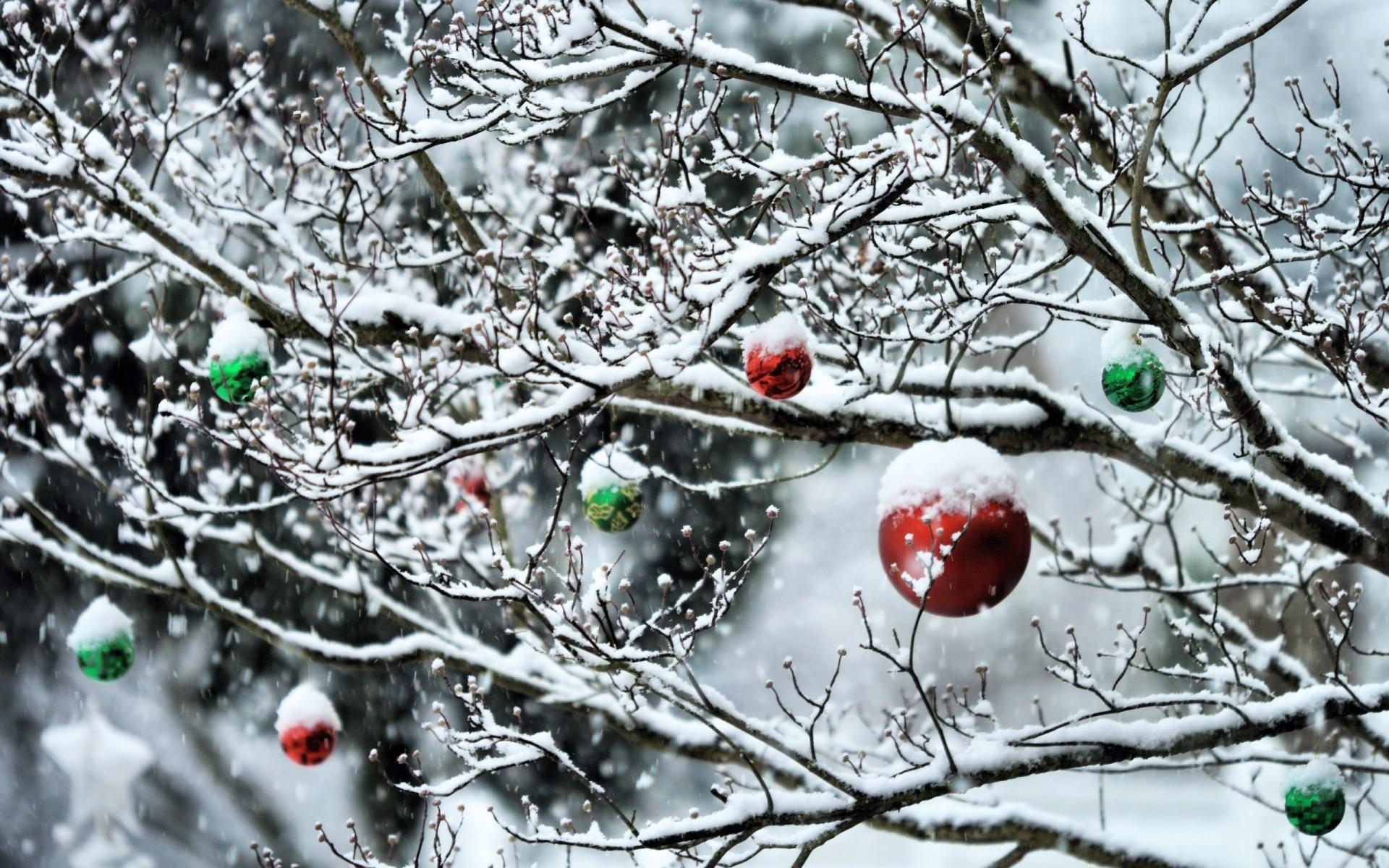 Большие открытки декабрь, сегодня православный