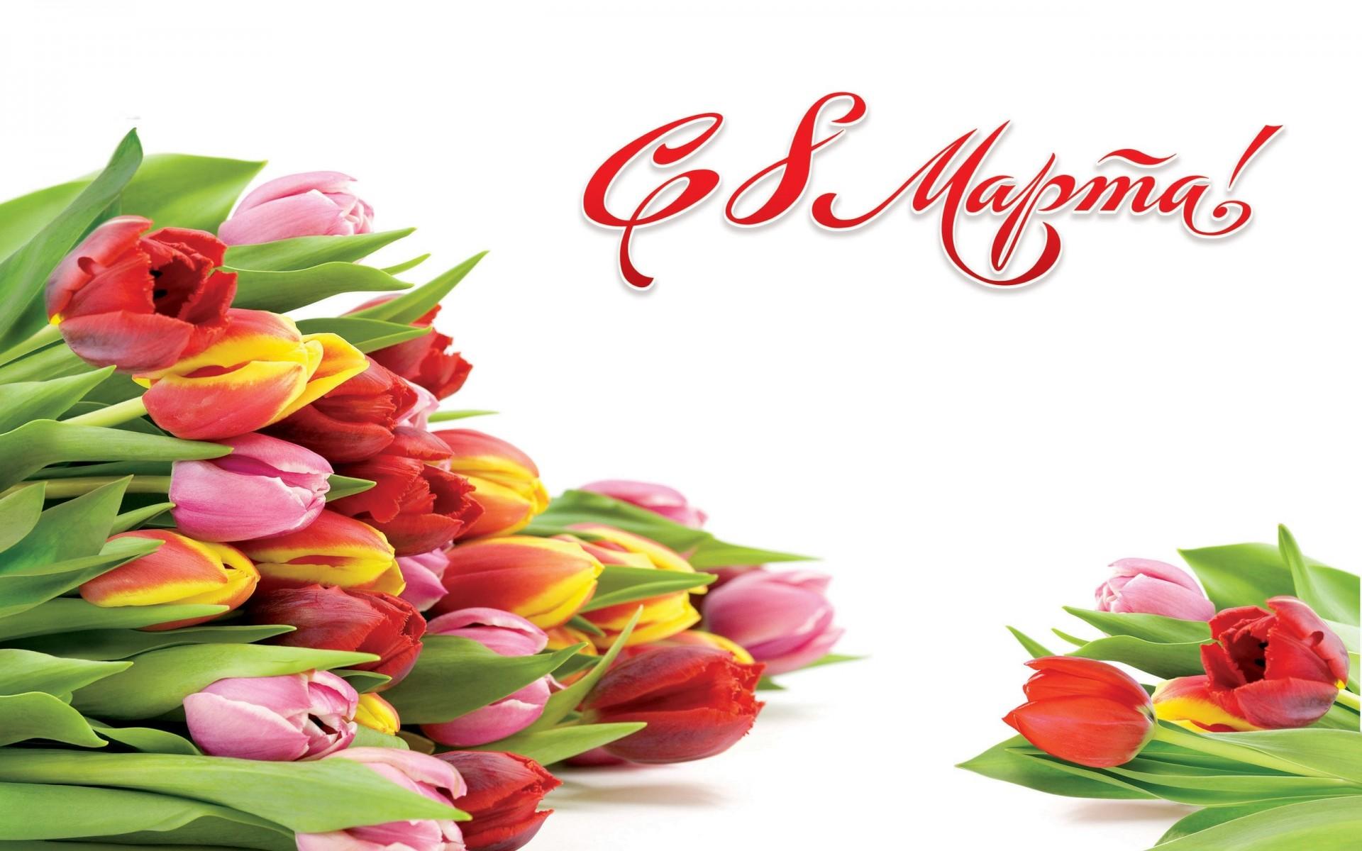 8 марта марта тюльпаны HD обои для ноутбука