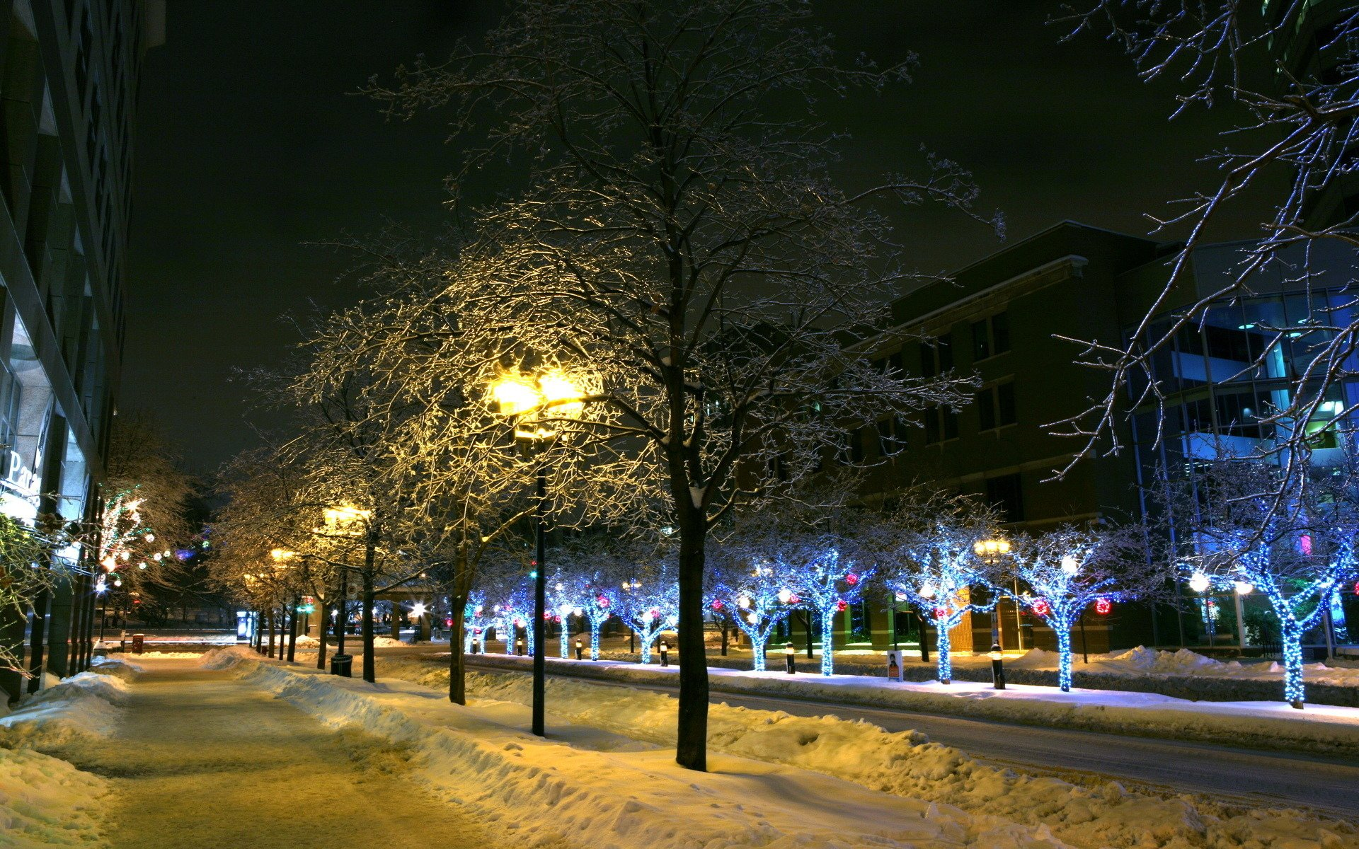 для картинки ночного зимнего города бизнеса