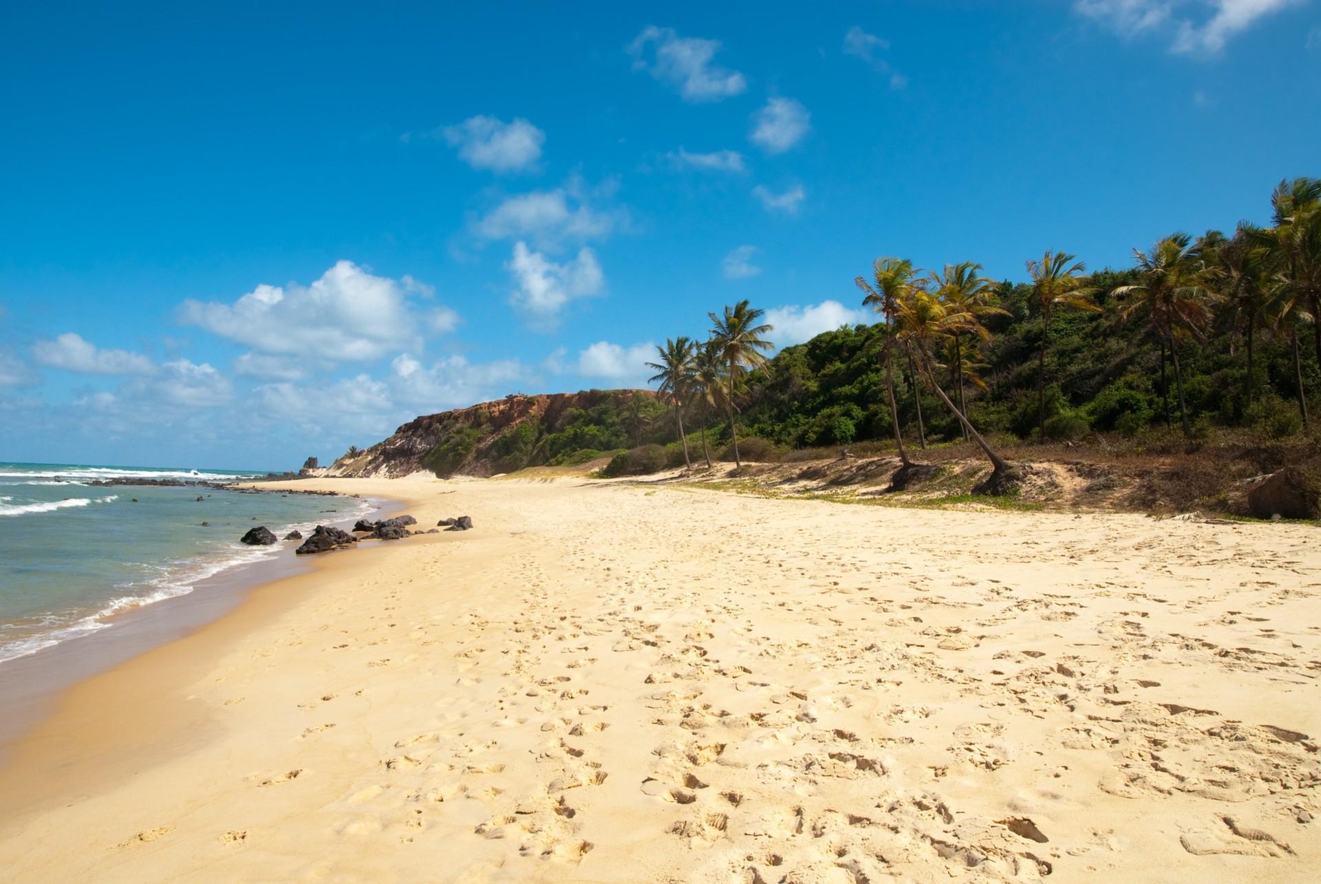 Бразильские пляжи с их эротикой 2