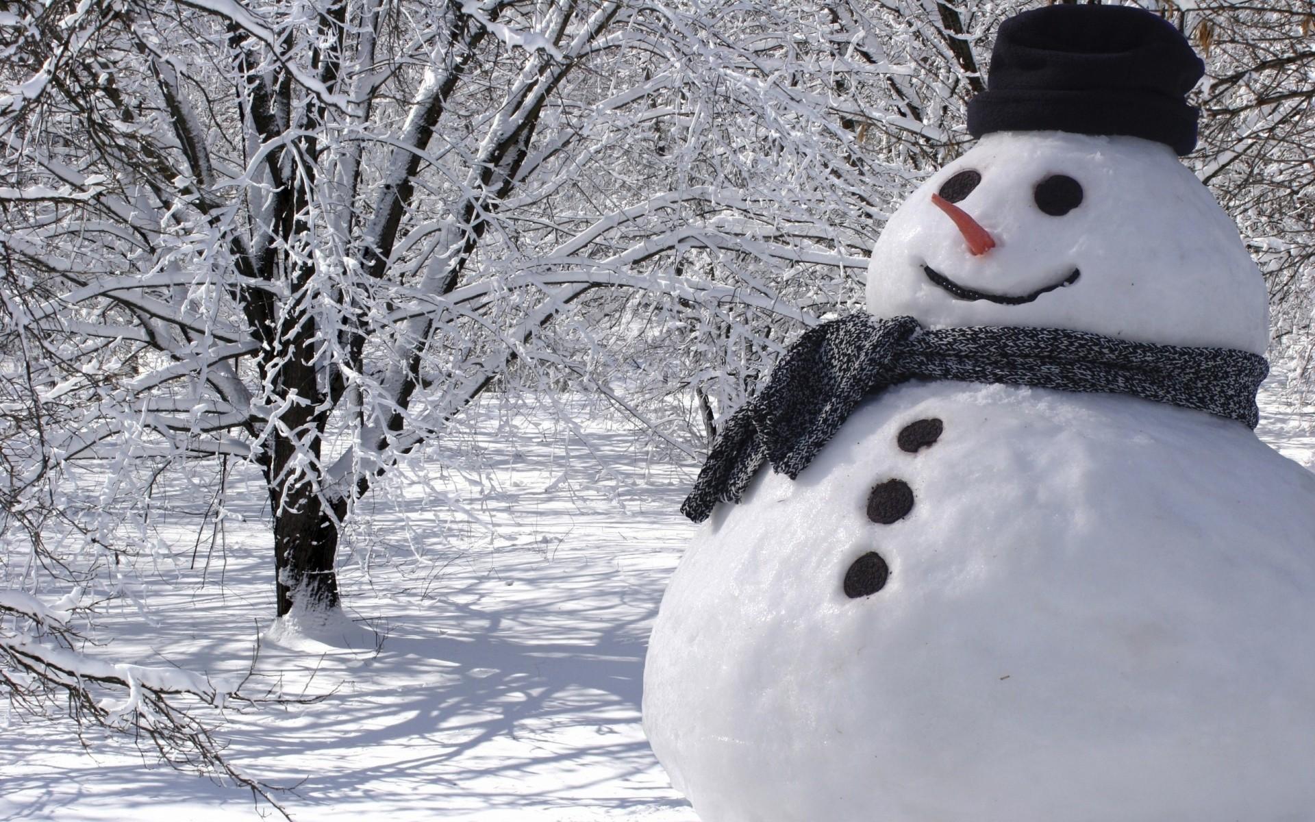 Красивые снеговики фото своими руками