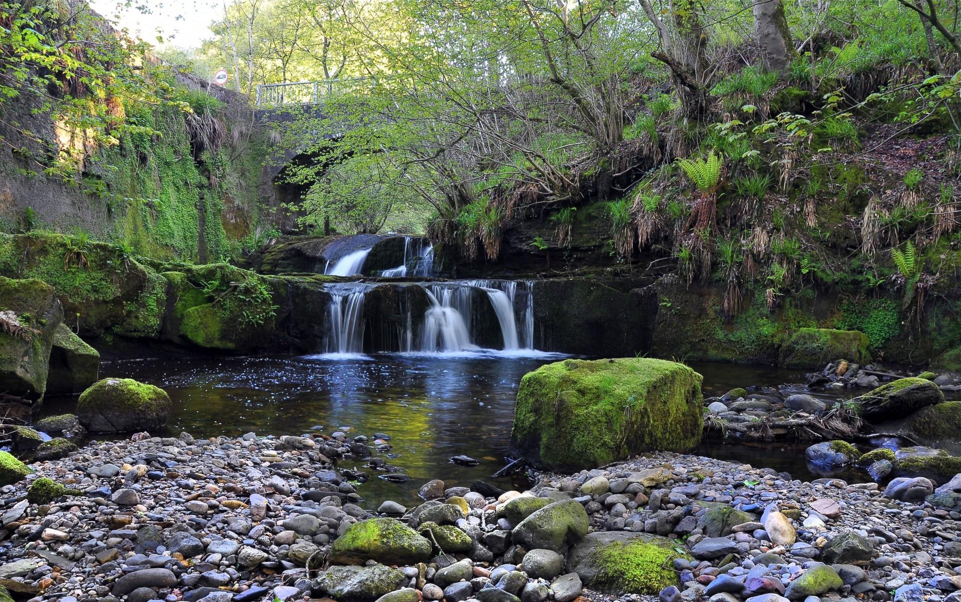 водопад деревья камни бесплатно