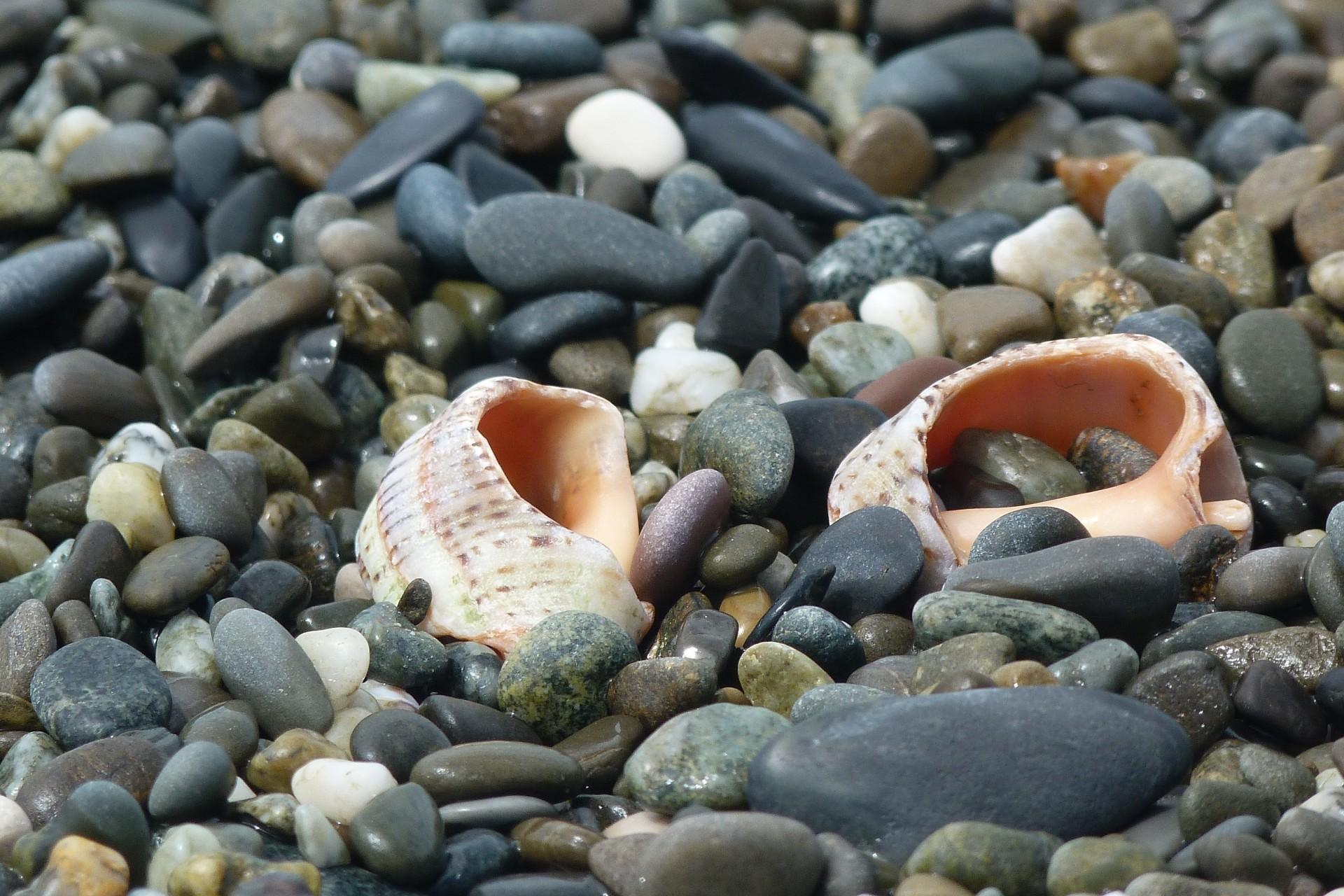фото морских камушек на море большей части