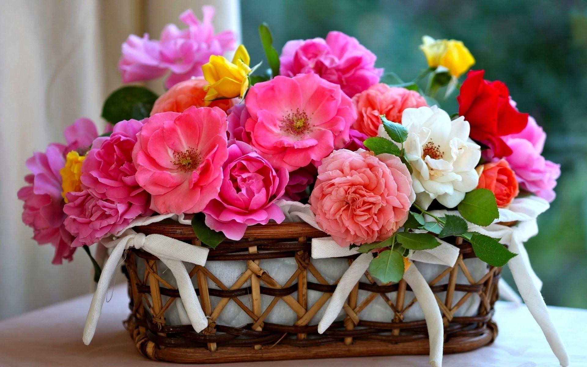 Фото с днем рождения с цветами