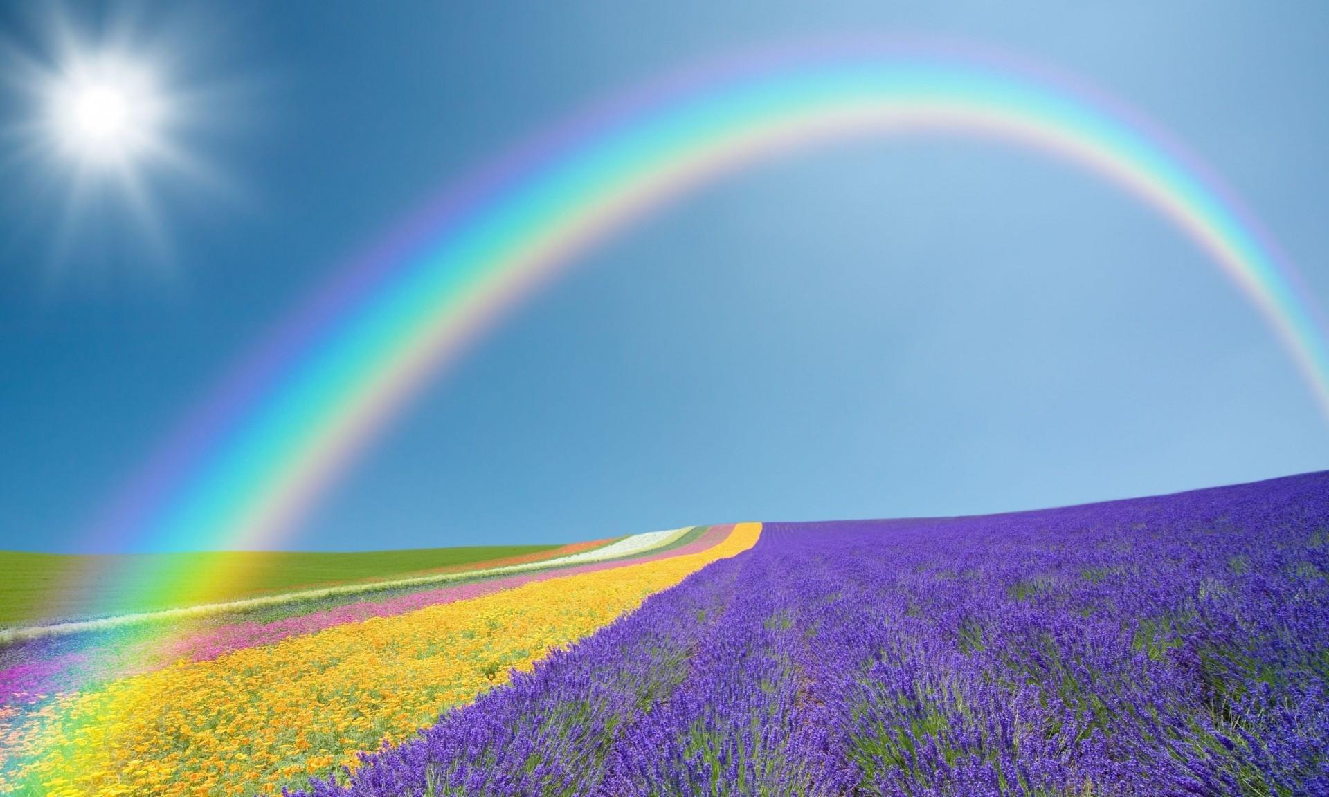 Цветы радуги