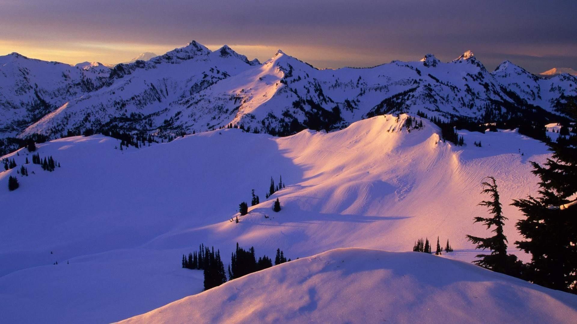 гора снег ели зима mountain snow ate winter скачать