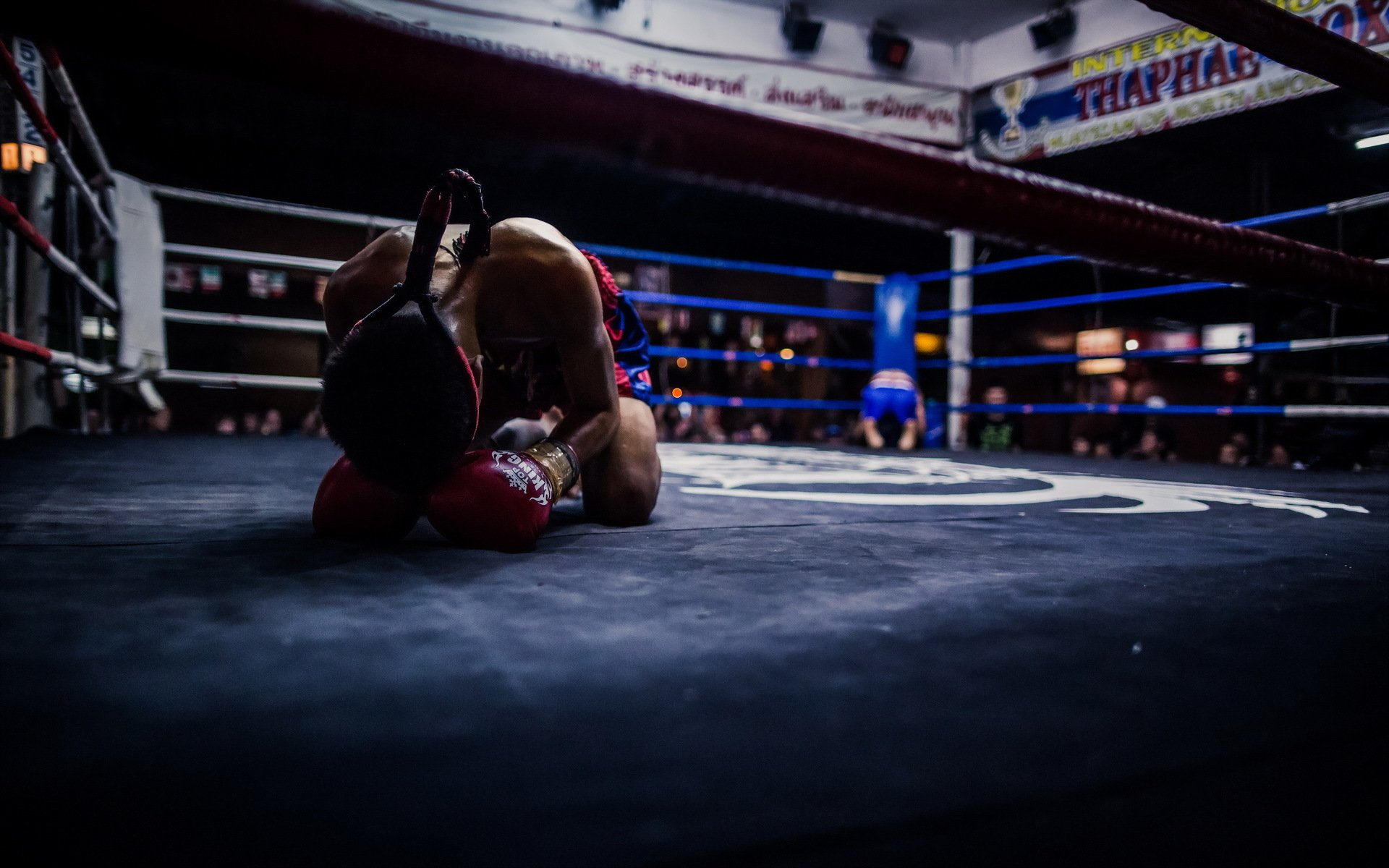 фото боксеров на ринге в высоком качестве его