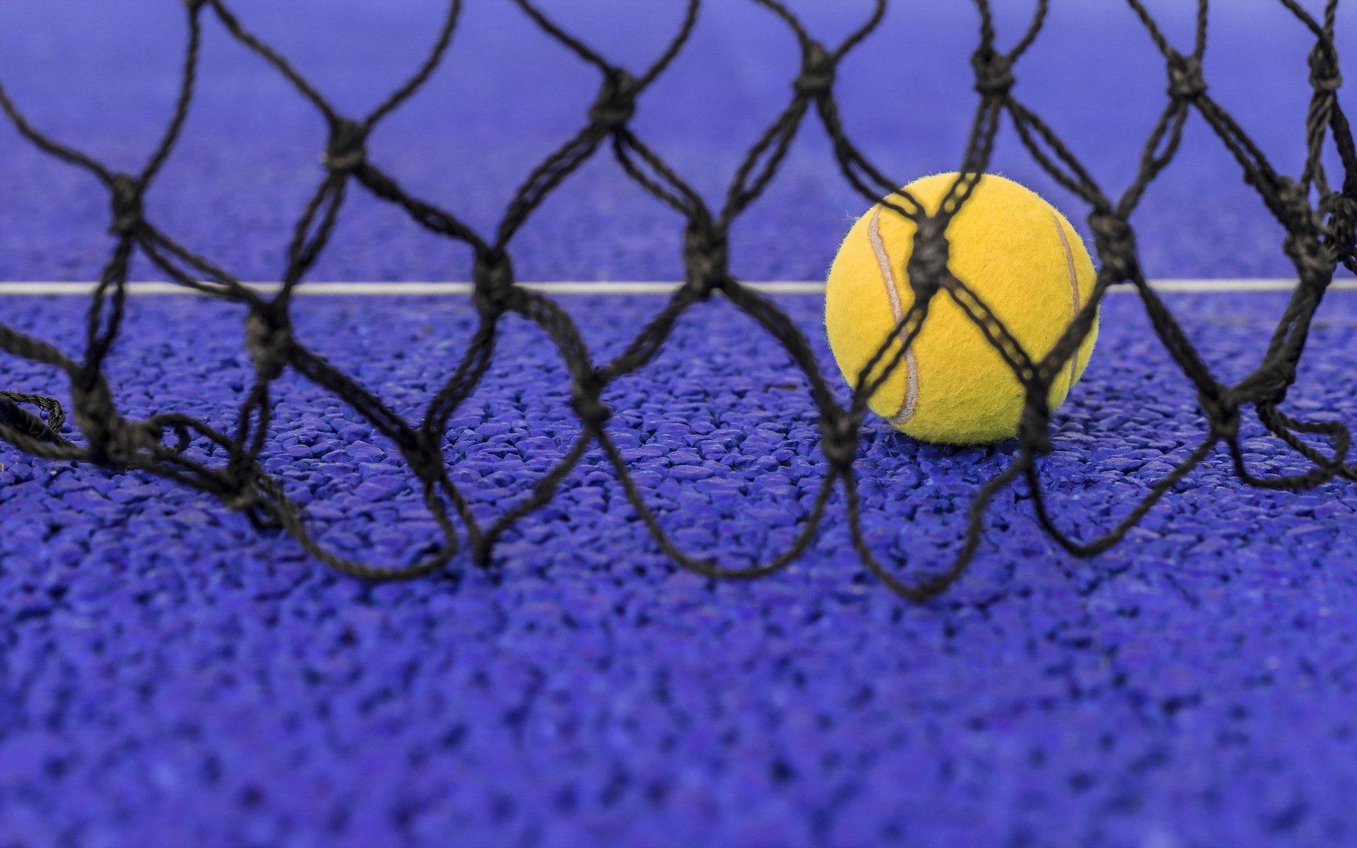 Мяч в сетке  № 1365509 бесплатно