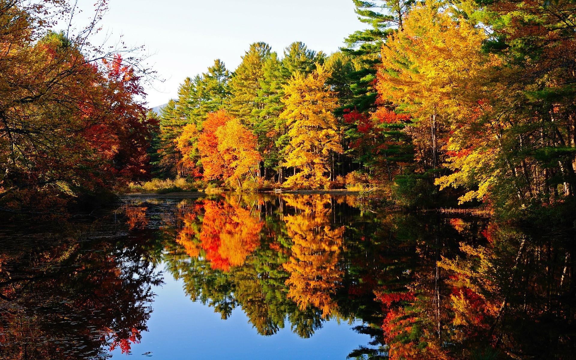 очень красивые картинки про осень этой странице